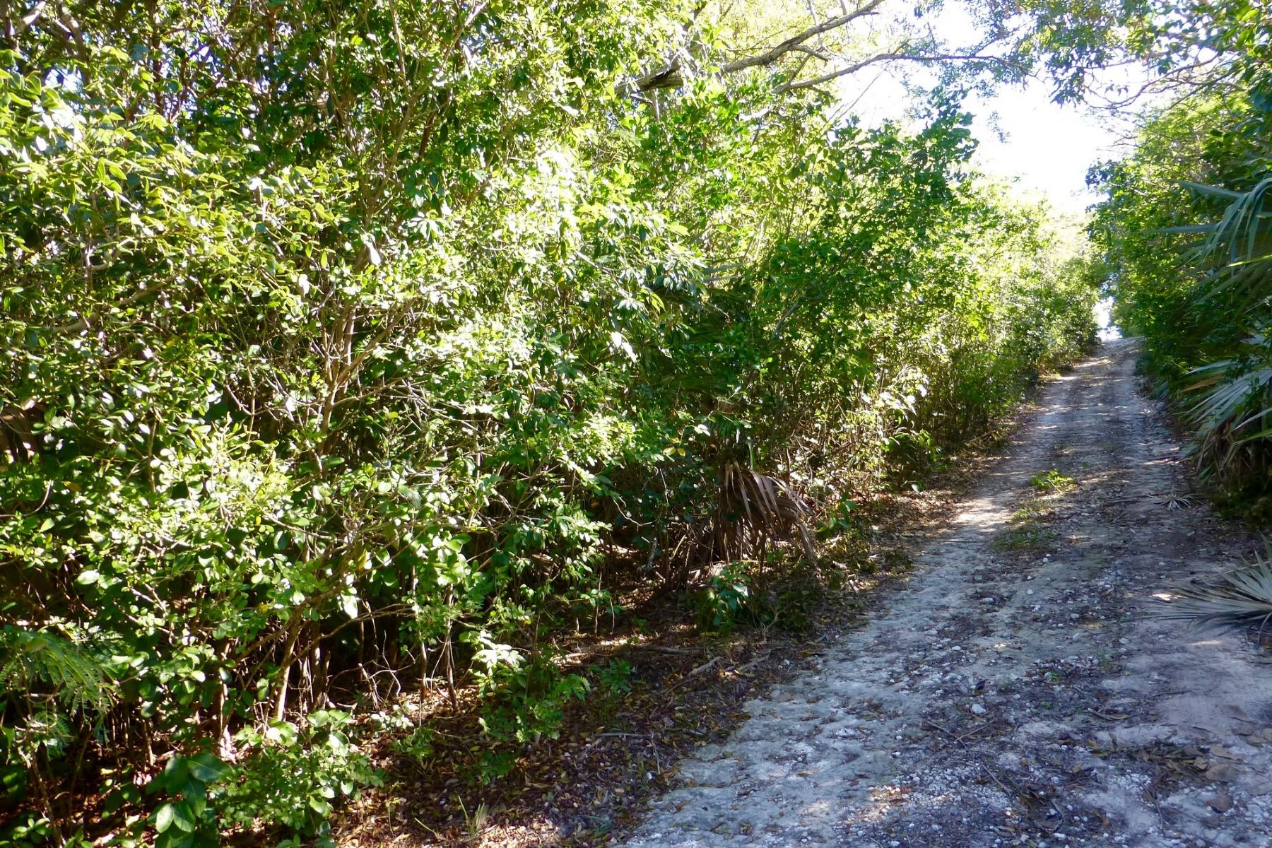 Additional photo for property listing at Lot 6, Block 66 Eleuthera Island Shores, Gregory Town, Eleuthera Bahamas