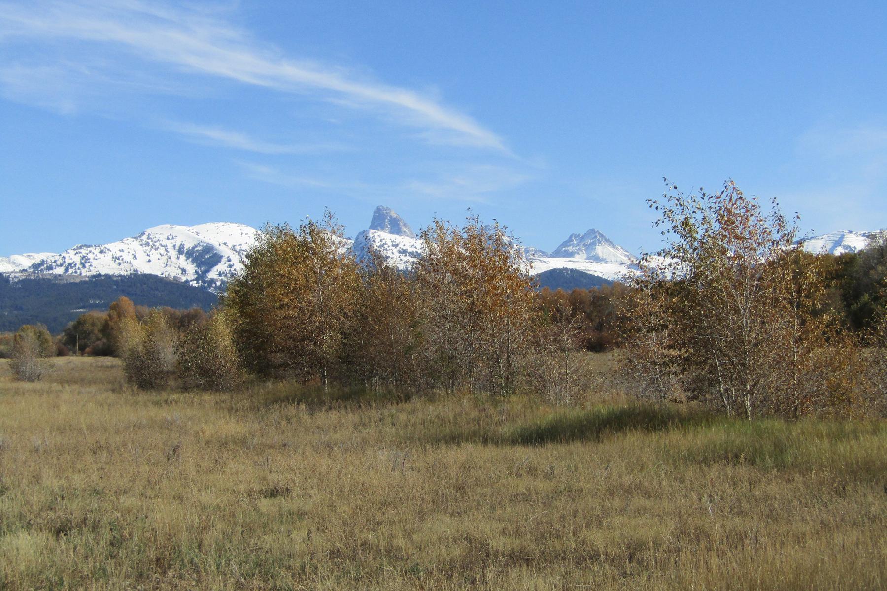 Land for Sale at Teton Views and Seasonal Waterway 432 Granite Basin Loop Tetonia, Idaho 83452 United States