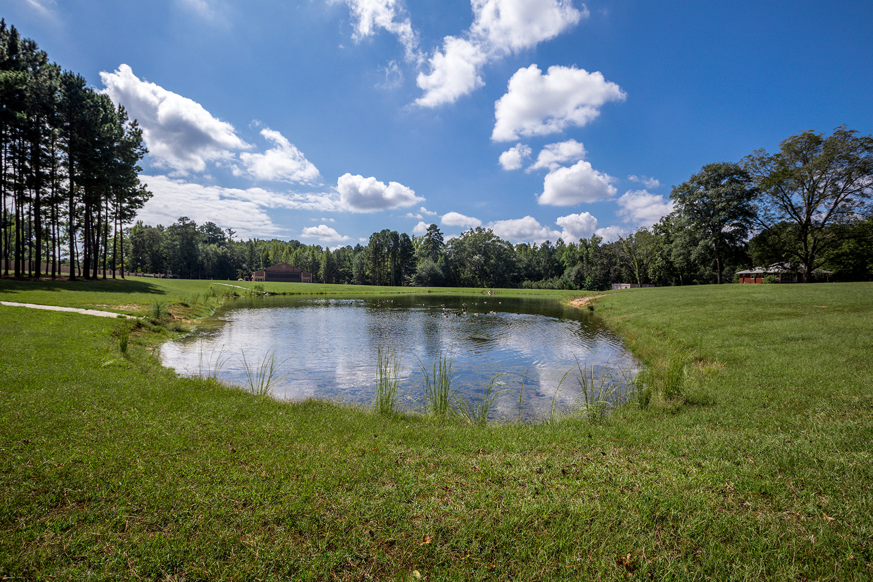 Additional photo for property listing at Beautiful Hidden 103+/- Acre Treasure In The Heart Of Fayette County 165 County Farm Road, Fayetteville, Georgia 30215 Estados Unidos