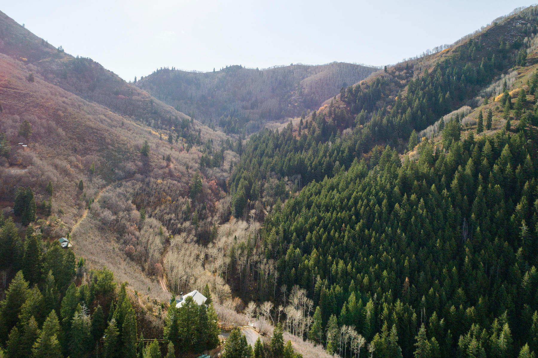 Land for Sale at 2.18 Acres of Prime Land in Mt. Aire Canyon 7343 E Panorama Rd Salt Lake City, Utah 84109 United States
