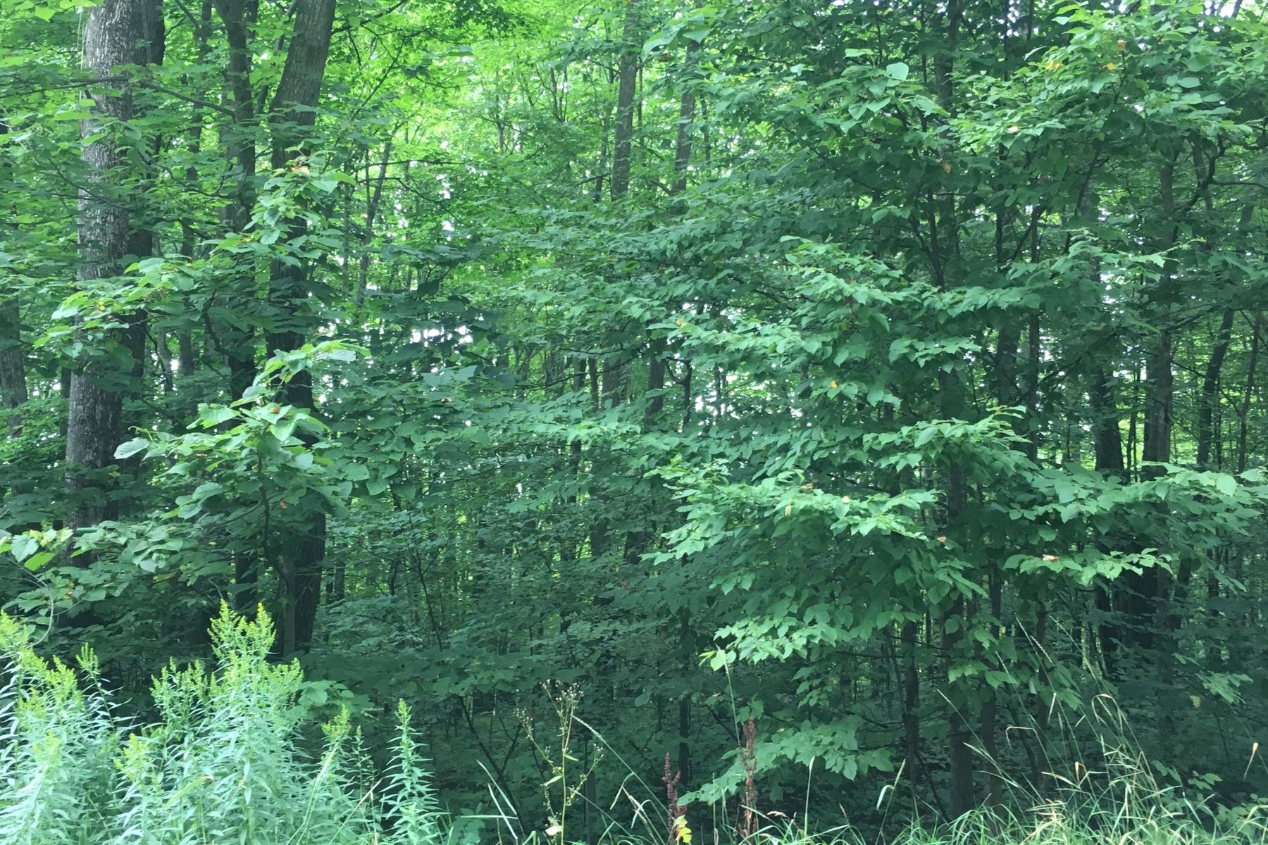 Land for Sale at 2295 Knollwood Drive Harbor Springs, Michigan, 49740 United States