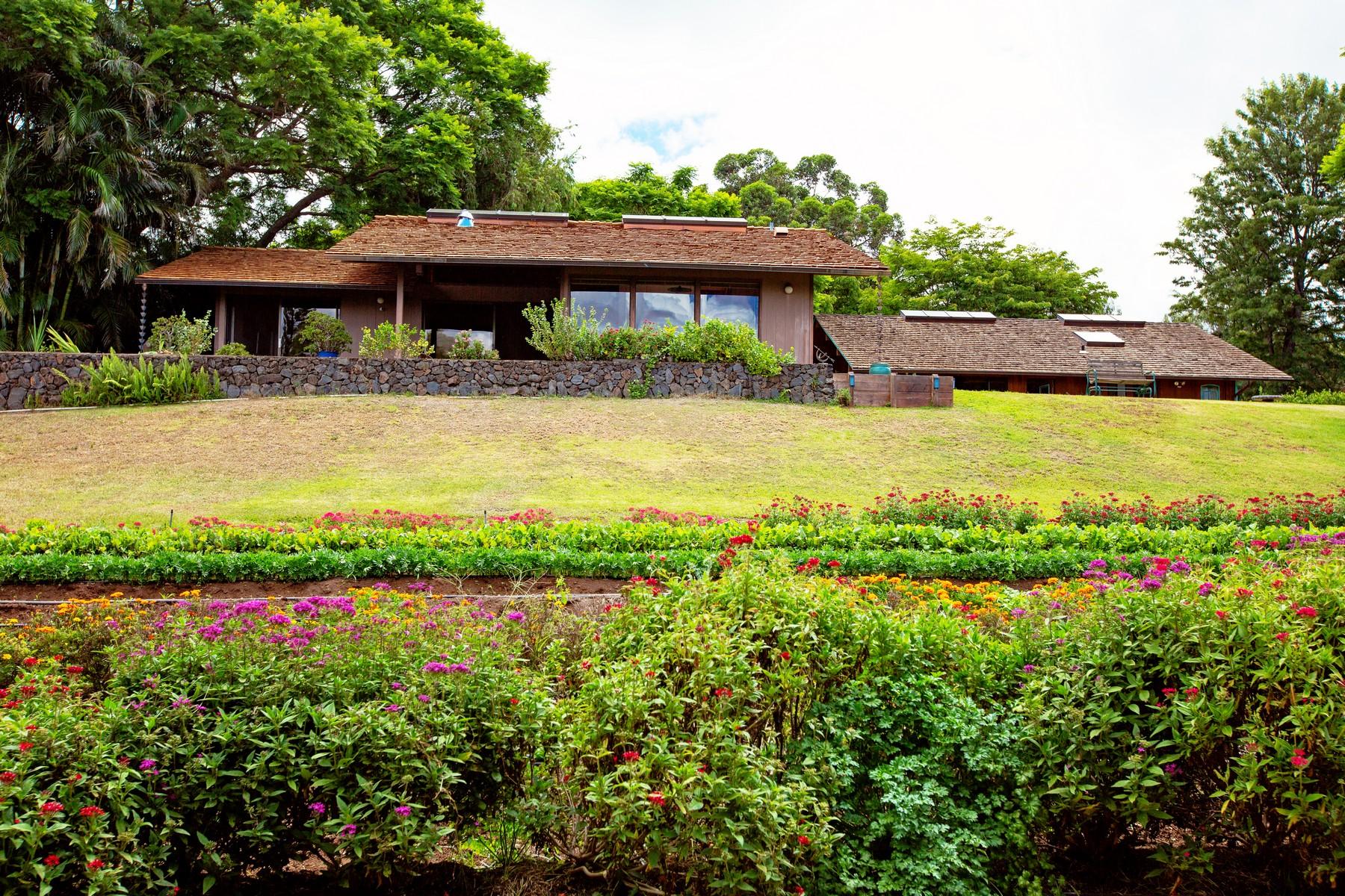 農場 / 牧場 / 種植場 為 出售 在 Bountiful Upcountry Home & Farm 200 Hoopalua Drive, Makawao, 夏威夷 96768 美國