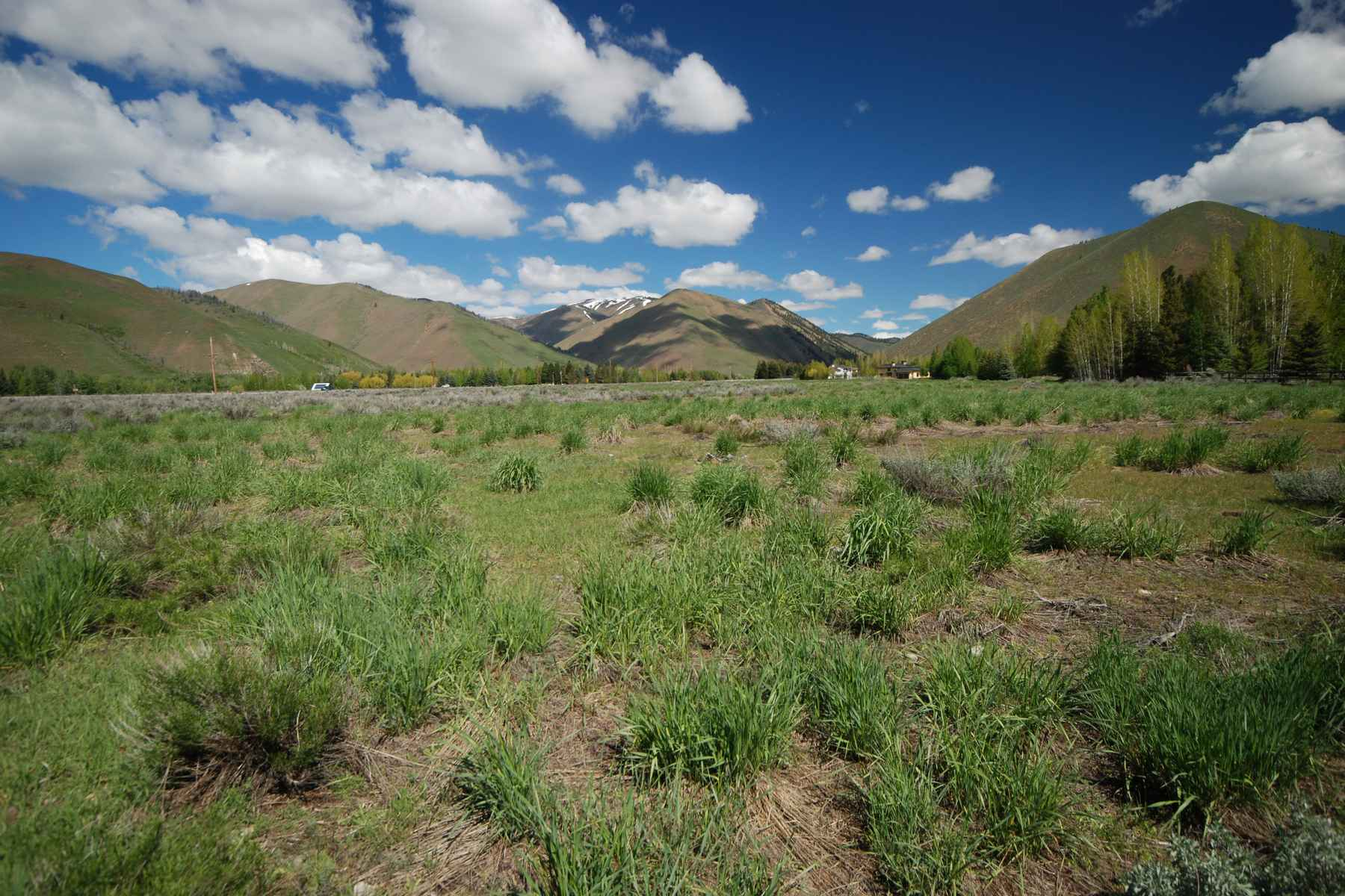 Land for Sale at Unique Mid-Valley Offering 9 Ohio Gulch Road Hailey, Idaho 83333 United States