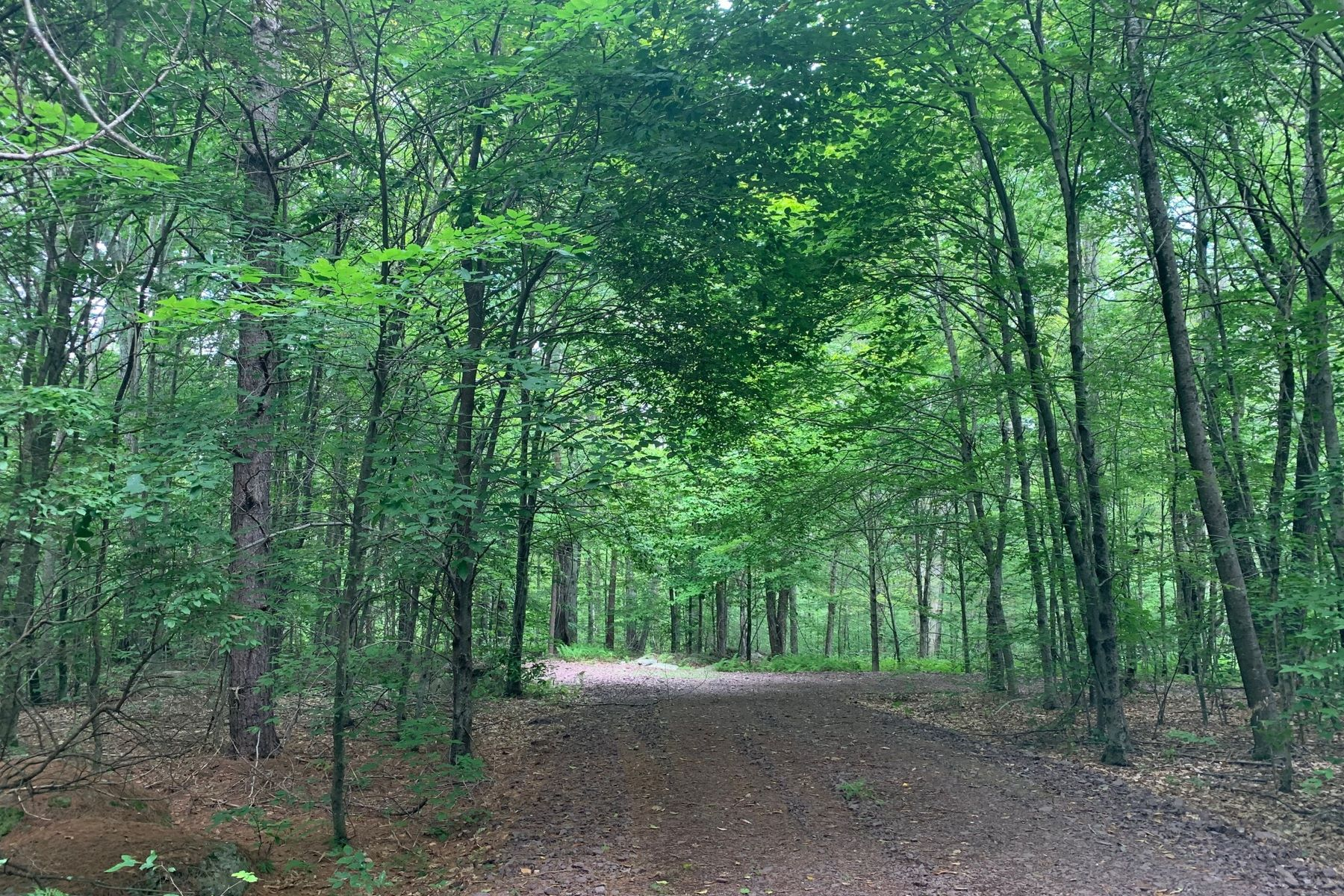 Land for Sale at TRII Lot 32 Top Ridge Trail Bethel, New York 12720 United States