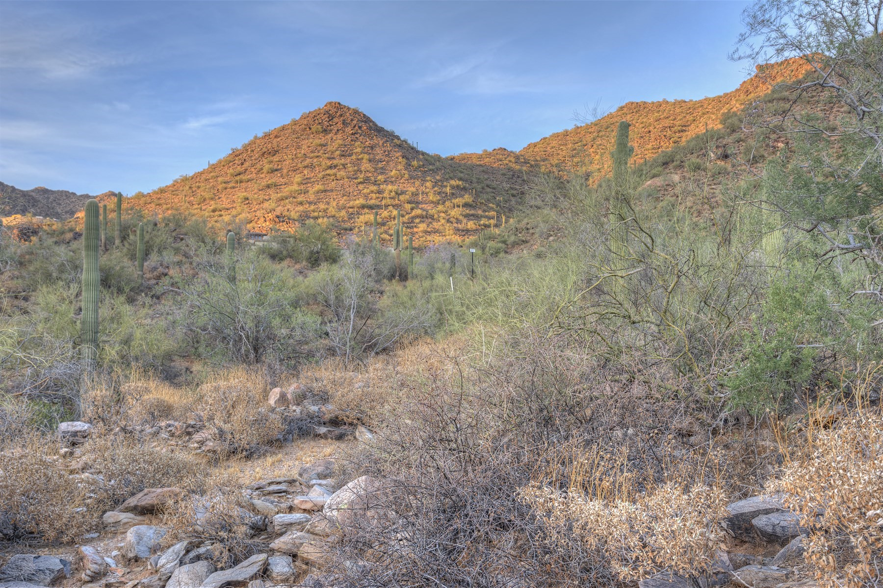 Land for Sale at The Valley's Best Unobstructed Vistas with Panoramic Views 20801 N 112th St #1717 Scottsdale, Arizona 85255 United States