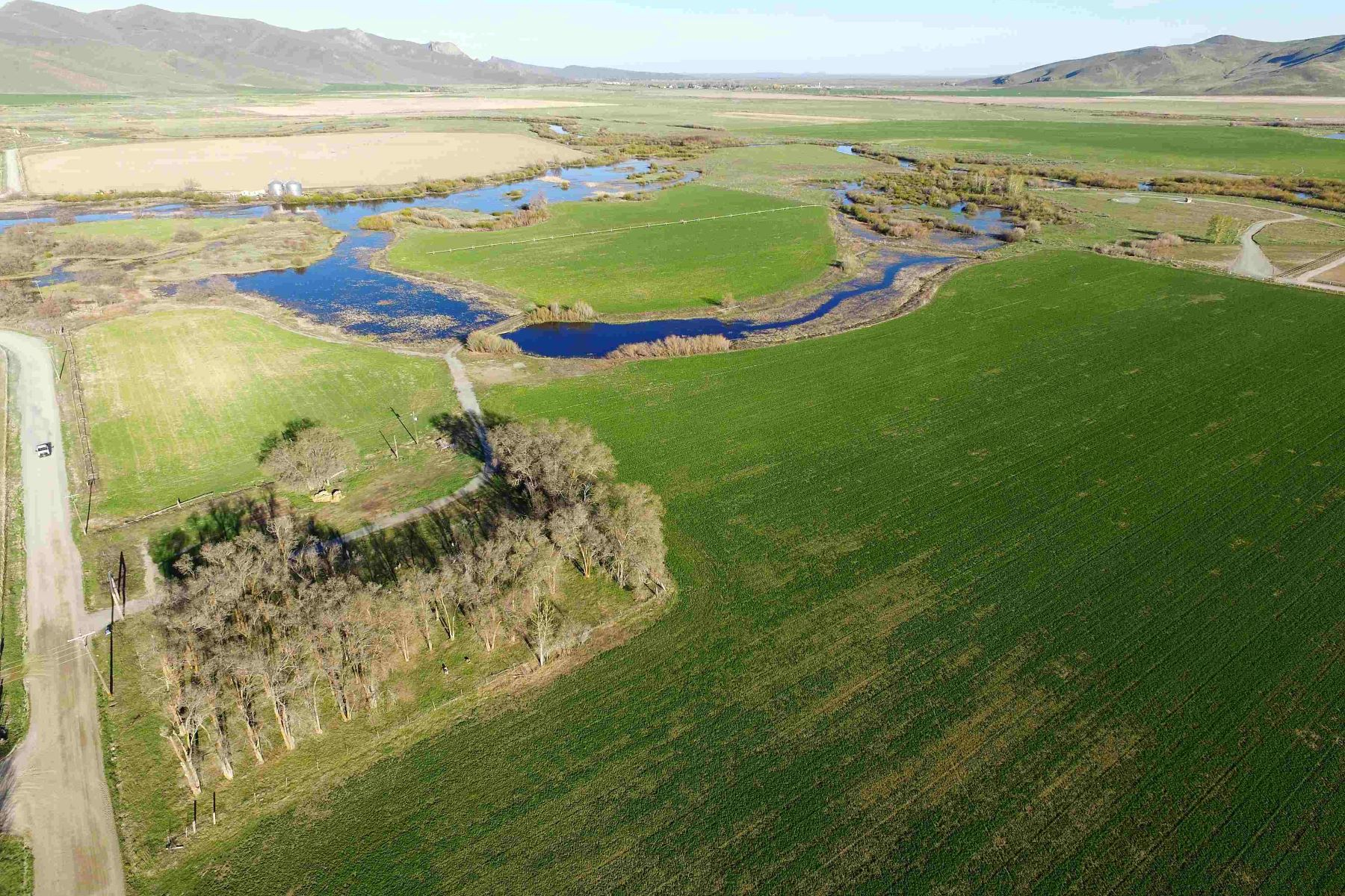 Farm / Ranch / Plantation for Sale at Willow Bend 402 N Picabo Road Picabo, Idaho 83348 United States