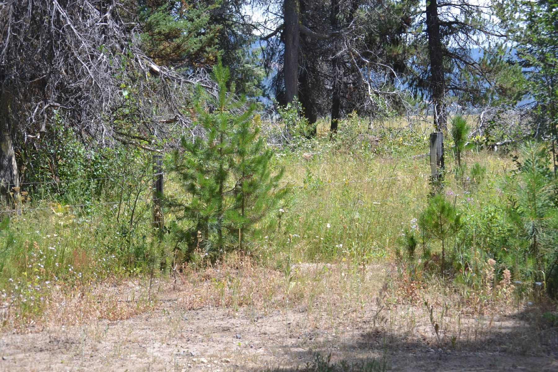 Land for Sale at 63 Windsong Way, Donnelly 63 Windsong Way Donnelly, Idaho 83615 United States