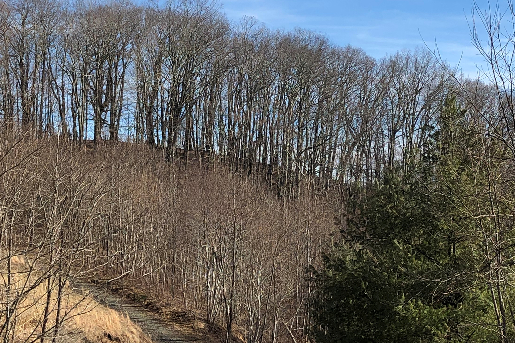 Land for Active at NEWLAND - APPLE TREE RIDGE Lot 42 & 44 Appletree Rdg Newland, North Carolina 28657 United States