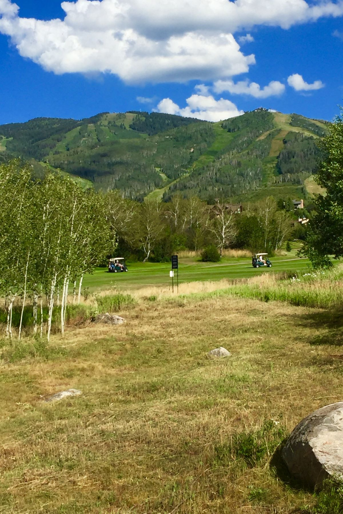 Additional photo for property listing at Best Duplex Building Lot on Rolling Stone Golf Course 1340 Steamboat Boulevard Steamboat Springs, Colorado 80487 United States