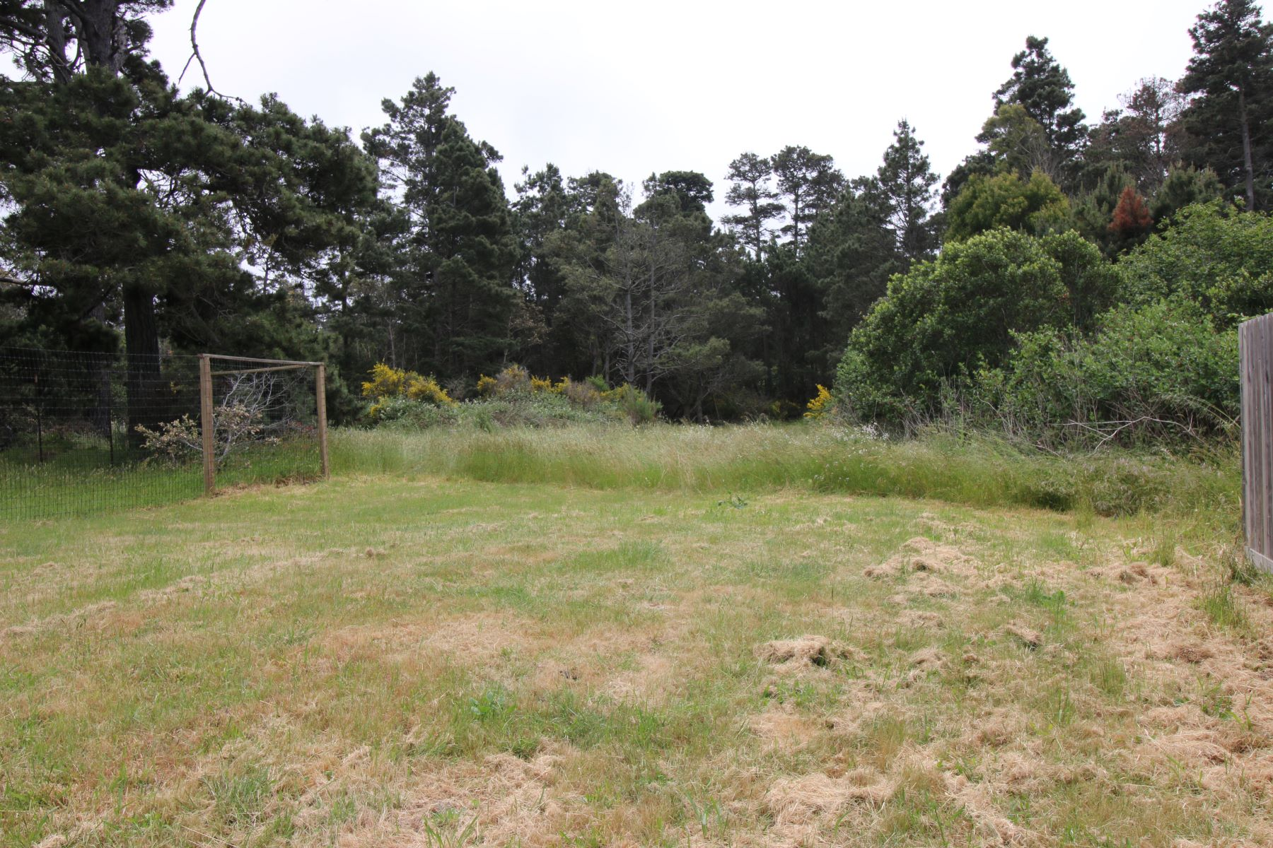 Additional photo for property listing at Natures Retreat 32875 Simpson Lane Fort Bragg, California 95437 United States