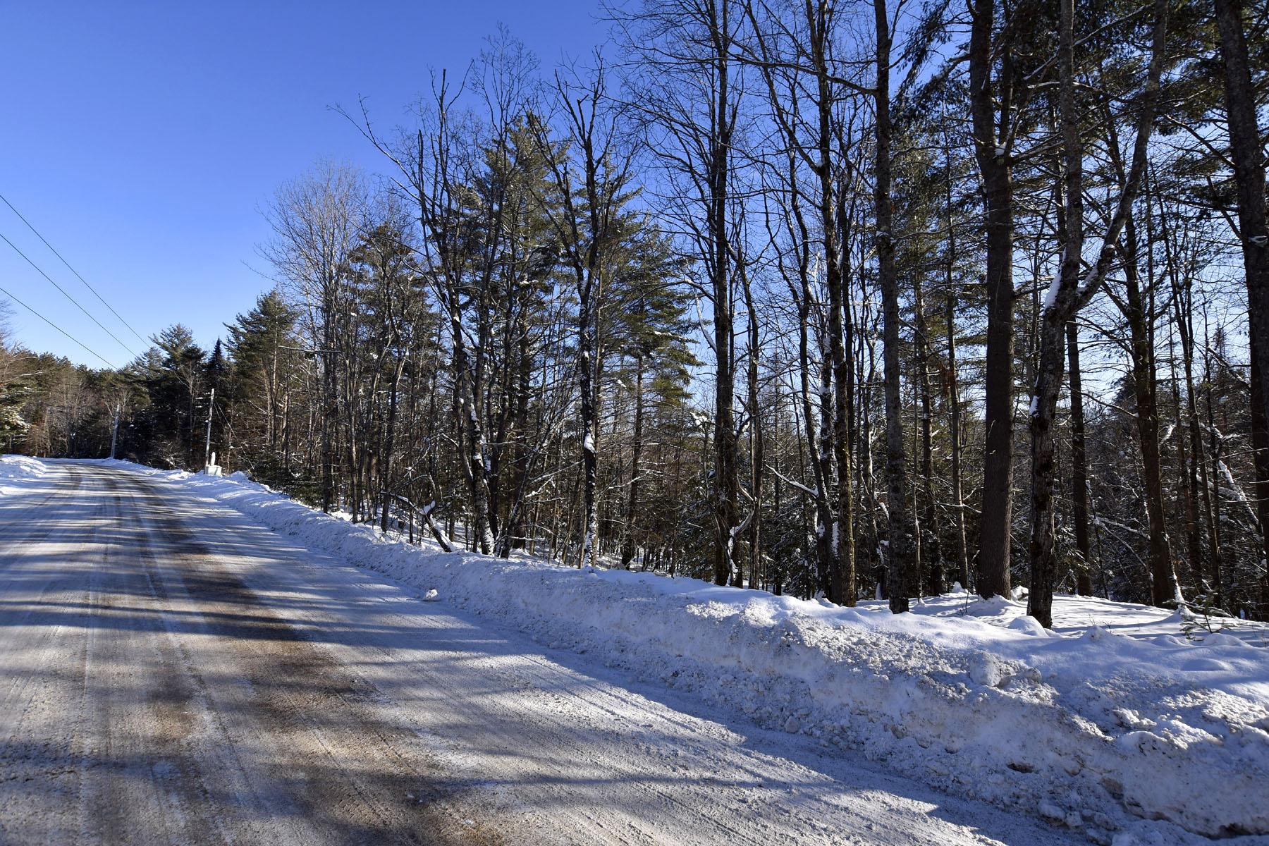 Land for Sale at Cedar River Lot 5 Cedar River Road - Lot 5 Indian Lake, New York 12842 United States