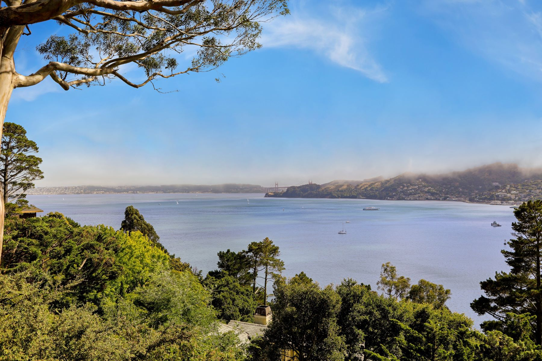 Additional photo for property listing at Belvedere Home with Stunning Golden Gate Bridge Views 29 Eucalyptus Road Belvedere, カリフォルニア 94920 アメリカ合衆国