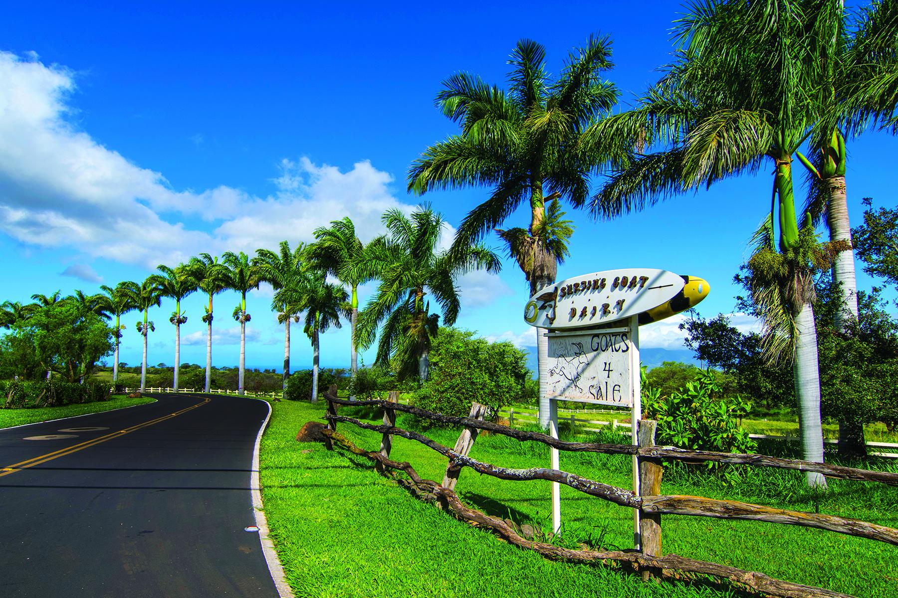 Φάρμα/ράντσο/φυτεία για την Πώληση στο Successful Maui Agri-Tourism Business 3651 Omaopio Road, Kula, Χαβαη 96790 Ηνωμένες Πολιτείες