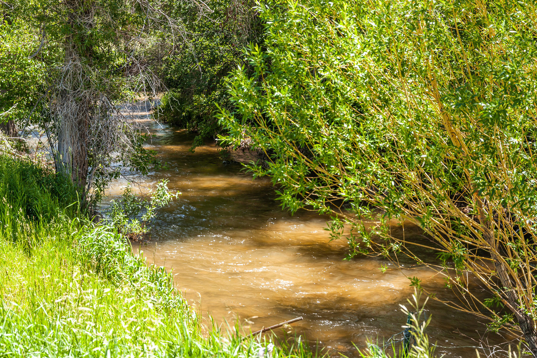 Land for Active at 5.5 Acre Irrigated Buildable Lot Fronts Chalk Creek 614 E Chalk Creek Rd Coalville, Utah 84017 United States