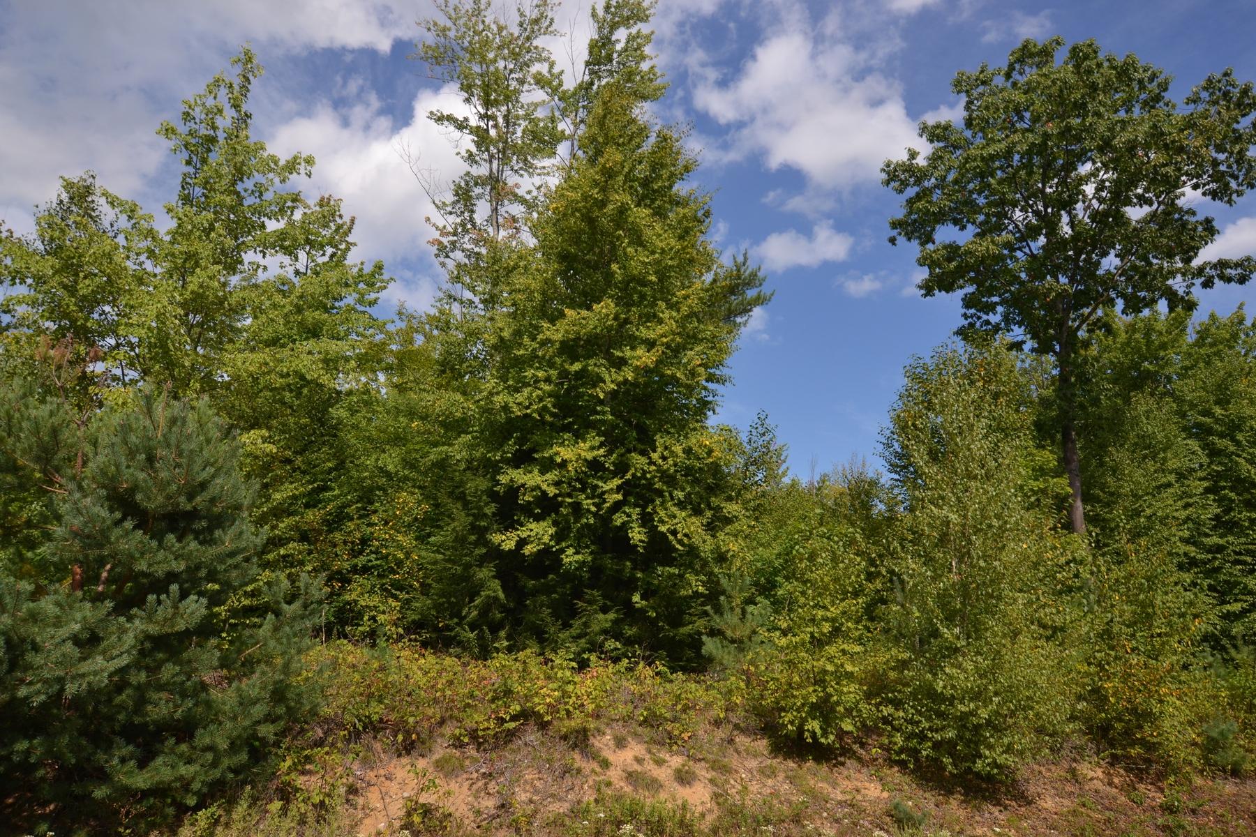 Terrain pour l à vendre à 17 Wynnridge, Rutland Town Rutland Town, Vermont, 05701 États-Unis