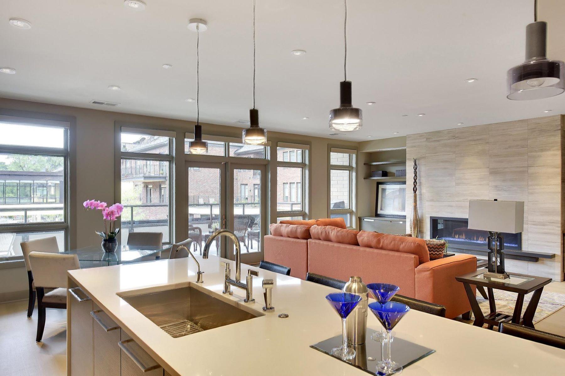 共管式独立产权公寓 为 销售 在 875 Lake Street N #203 扎塔, 明尼苏达州, 55391 美国