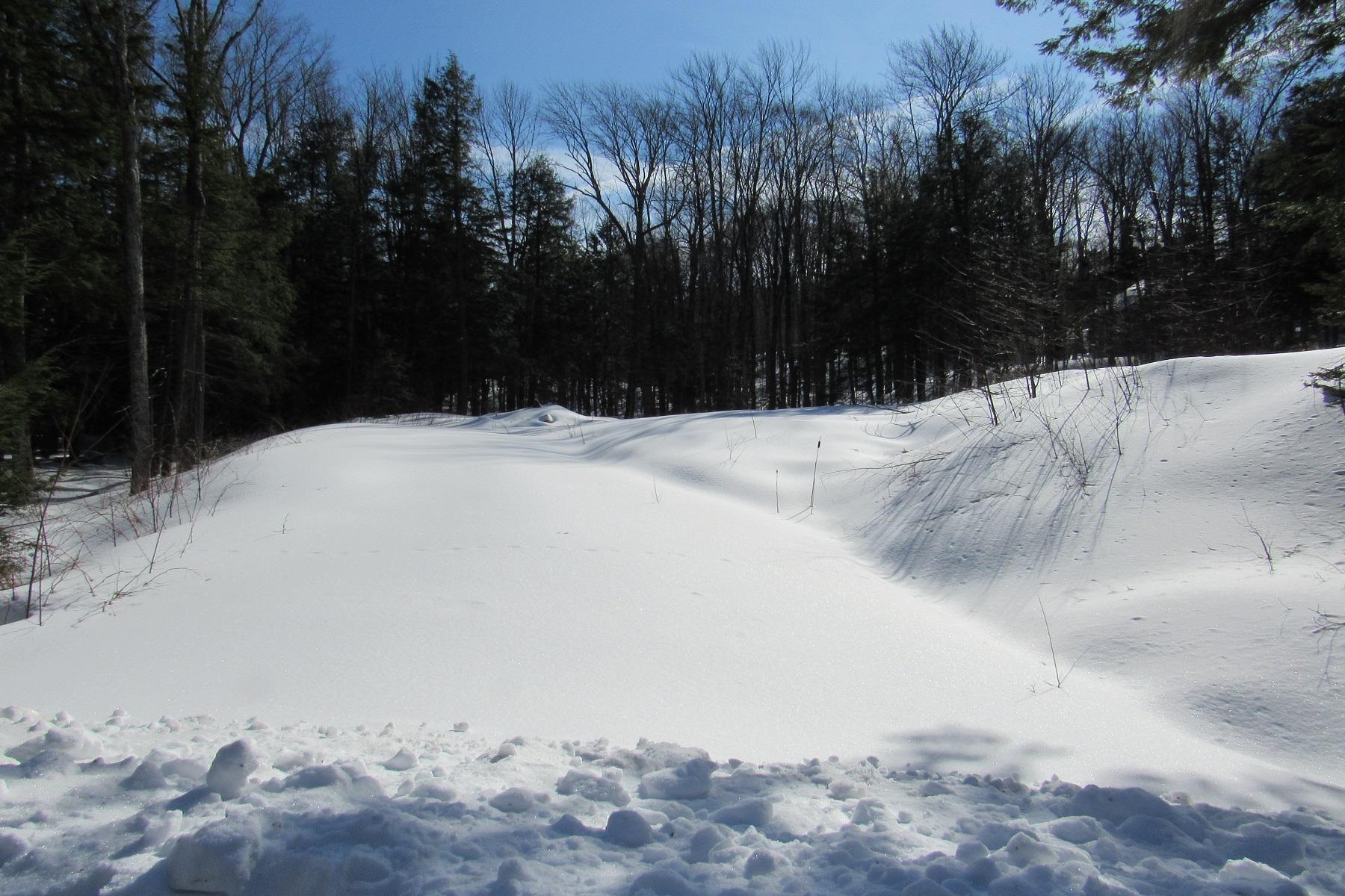Land for Sale at Buildable Parcel 23-51 Cubs Concourse Lot #46 Killington, Vermont 05751 United States
