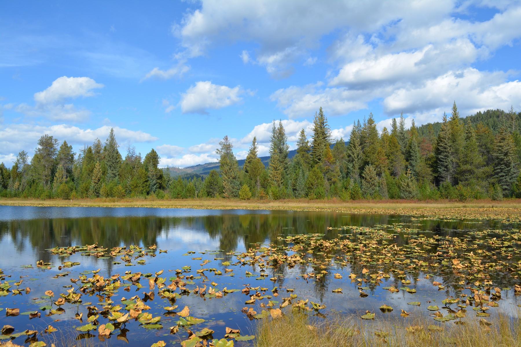 Terrain pour l Vente à Lee Lake at Sundance Estates Lot 2 Lee Lake Coolin, Idaho 83821 États-Unis