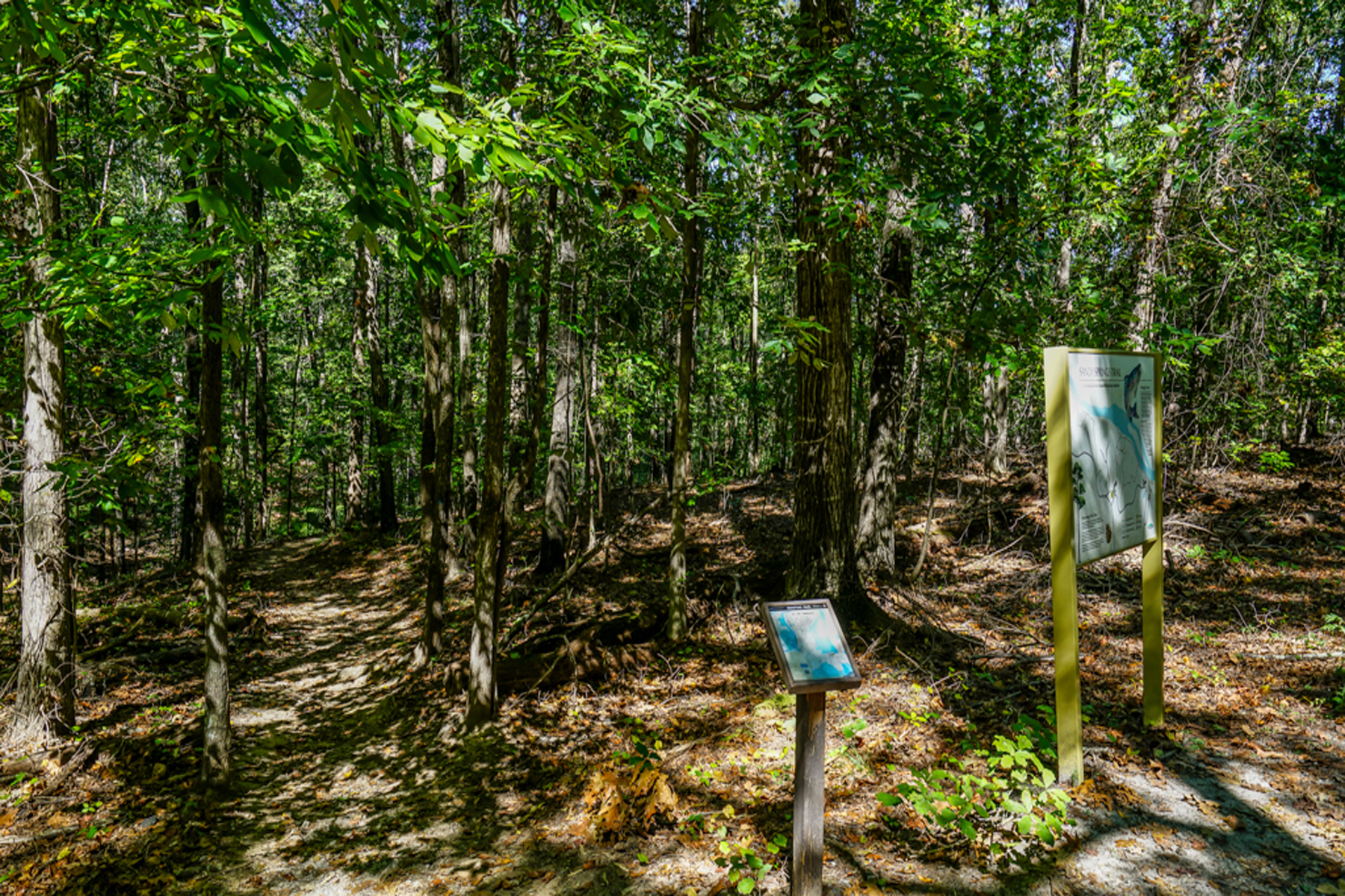 Land for Sale at Beautiful Sandy Springs Lot Surrounded By Parkland And Trails To River 8900B Island Ferry Road Sandy Springs, Georgia 30350 United States