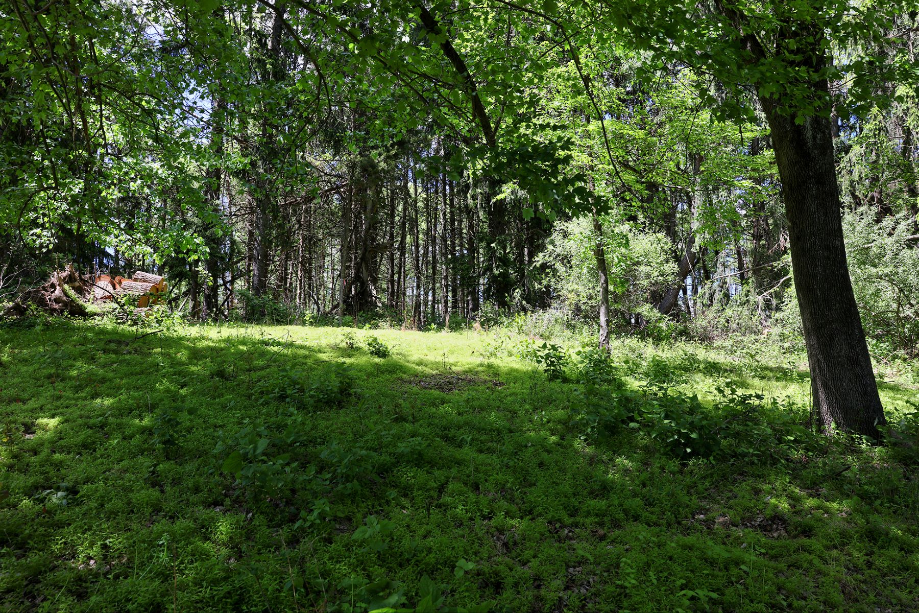 Land for Sale at Spectacular Views from this 9+ Acre Parcel 586 Brunswick Pike, Lambertville, New Jersey 08530 United States