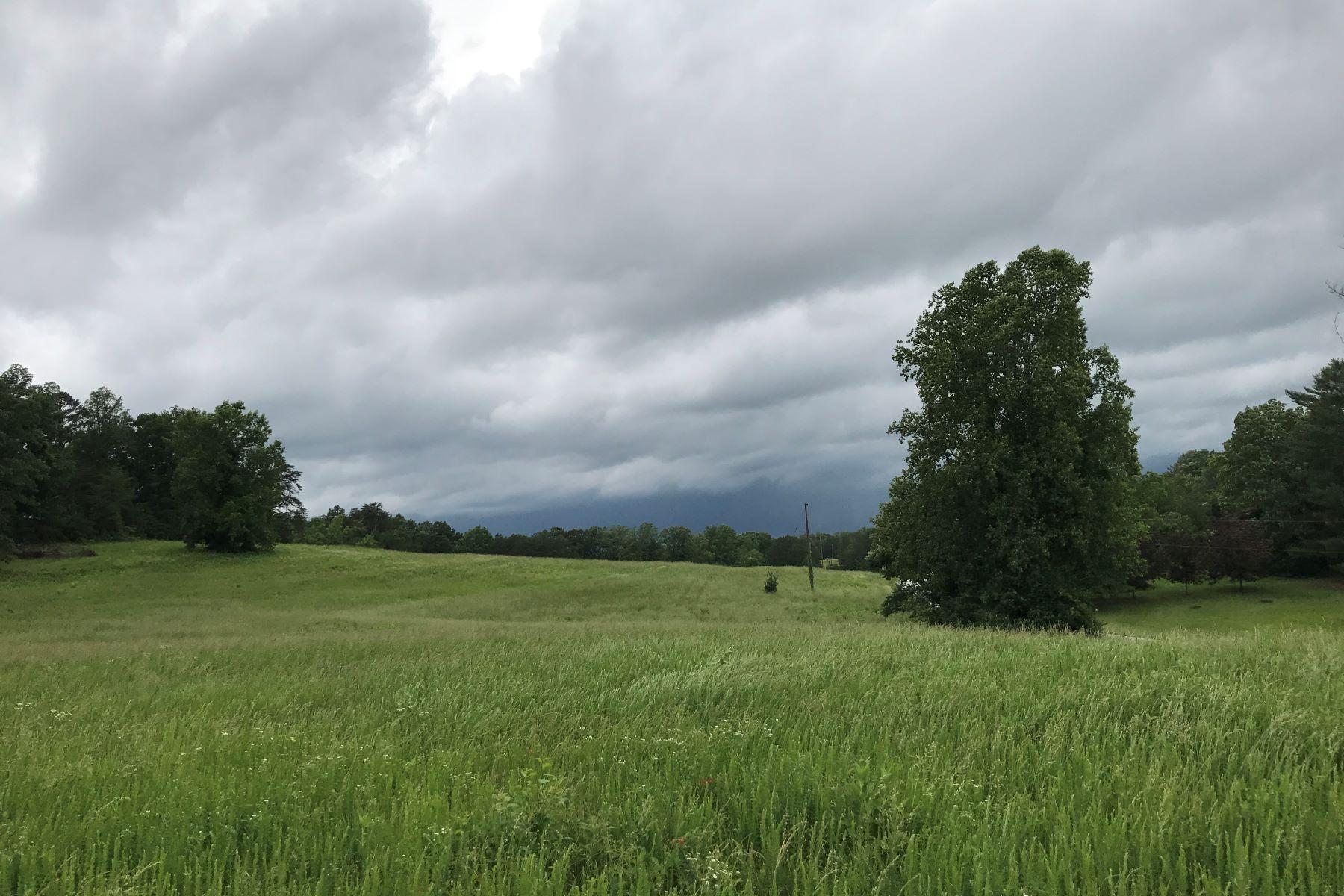 Terrain pour l à vendre à Piedmont Road - Equestrian Acreage Rutherfordton, Carolina Du Nord, 28139 États-Unis