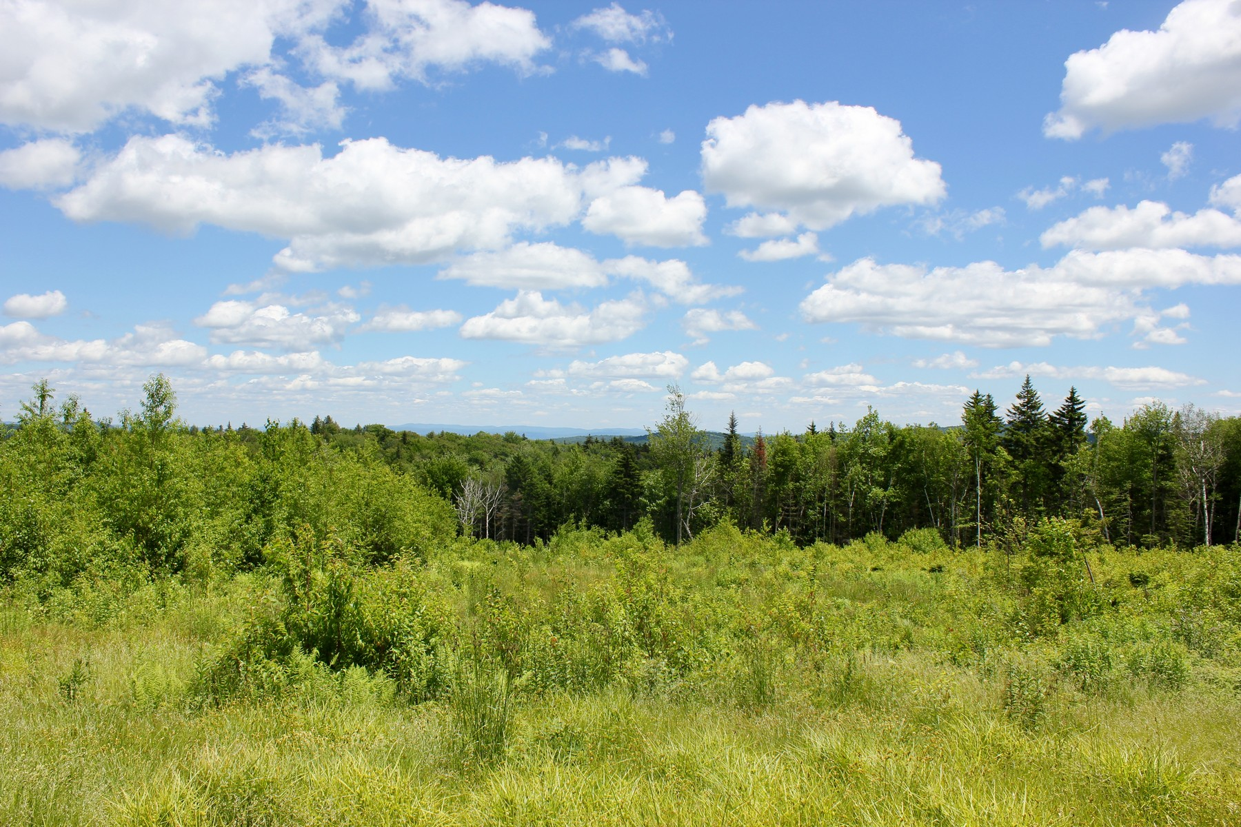 Land for Sale at 19+ Acres with Long Range Views Valley View Ext 10 Andover, Vermont 05143 United States