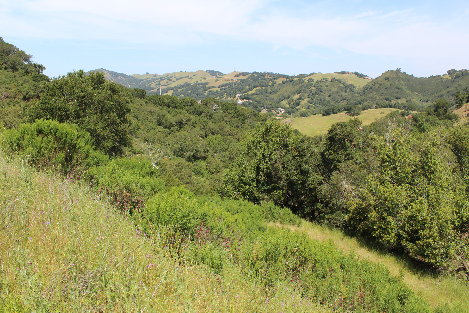 Земля для того Продажа на Build Your Dream Home on 3.2± Acres in Summit Hills 13955 San Miguel Road Atascadero, Калифорния 93422 Соединенные Штаты