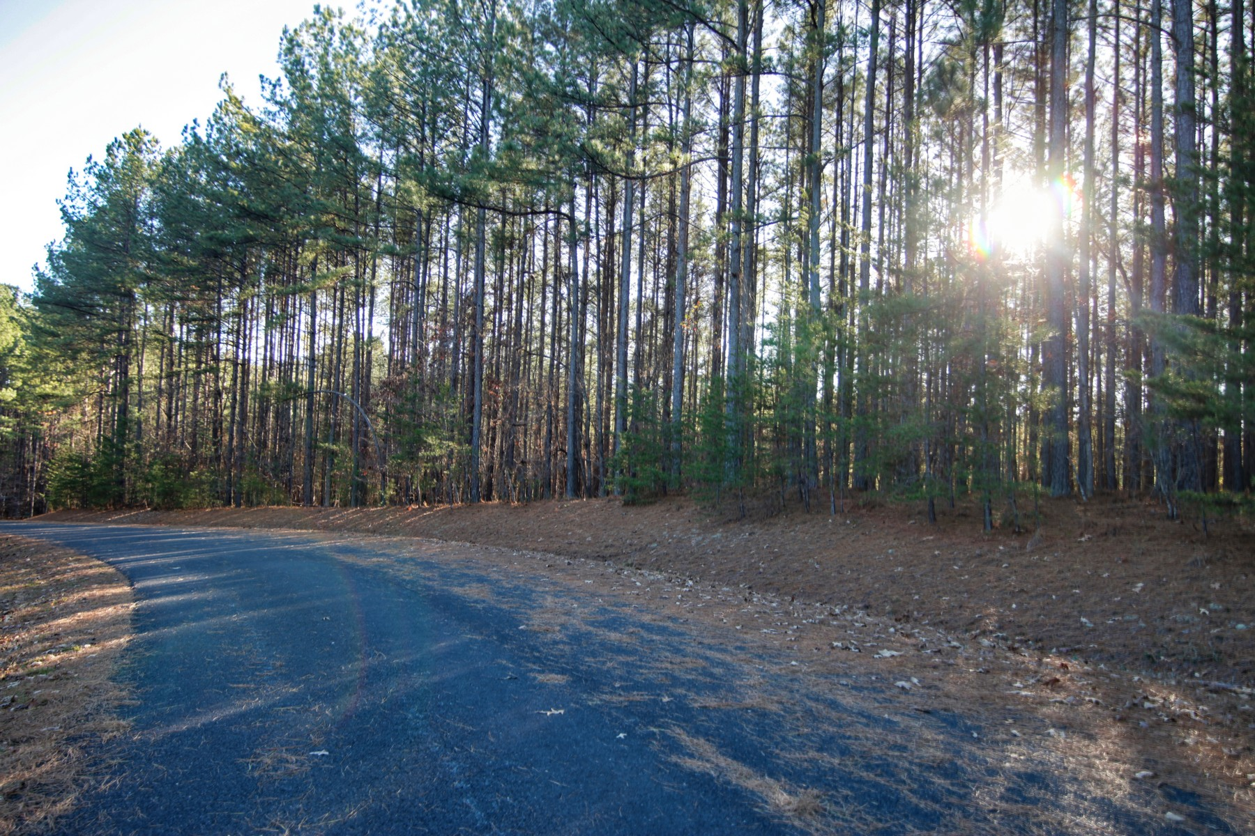 Land for Active at Lot #17 Hawk Ridge Lake Adger 1140 State Road #17 Mill Spring, North Carolina 28756 United States