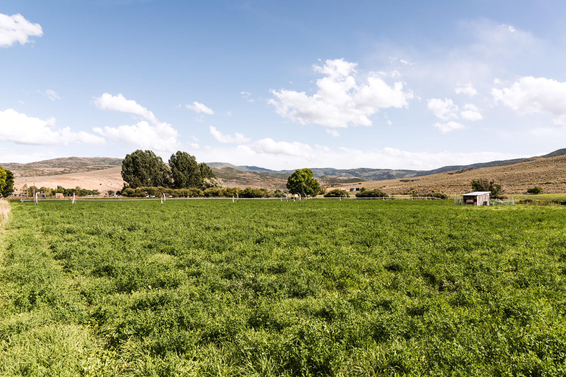 Land for Sale at Center Creek Gentleman's Farm or Ranch Land 3700 E Center Creek Rd, Heber, Utah 84032 United States