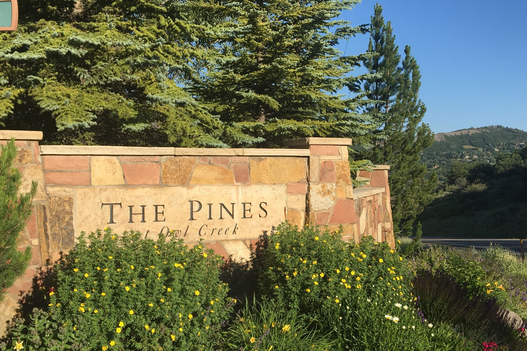 Land for Sale at Pines Lot 44 461 Pine Crest Drive, Snowmass Village, Colorado, 81615 United States