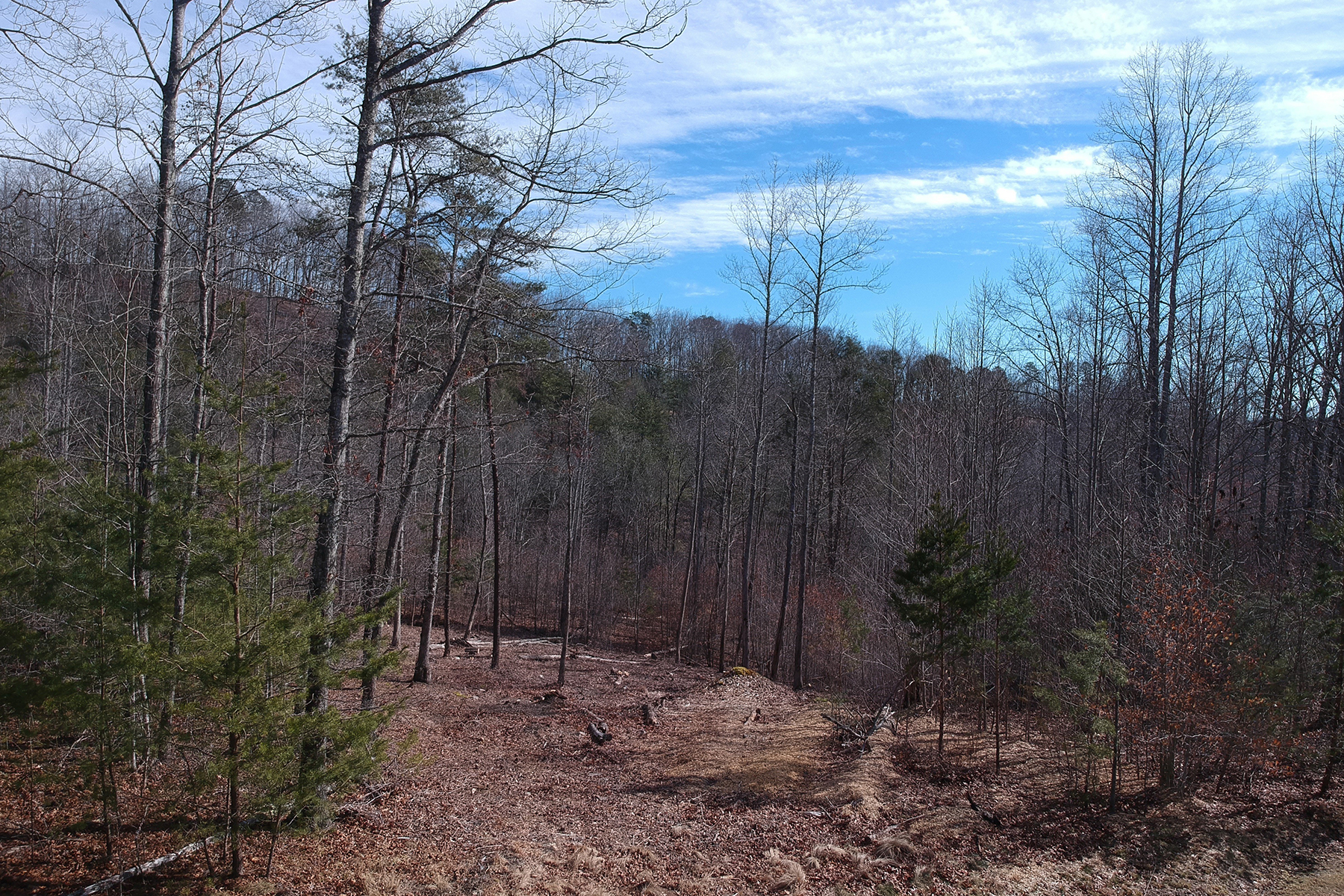 Land for Active at FRENCH BROAD CROSSING 225 Red Fox Trail , 17 Bluffs Marshall, North Carolina 28753 United States