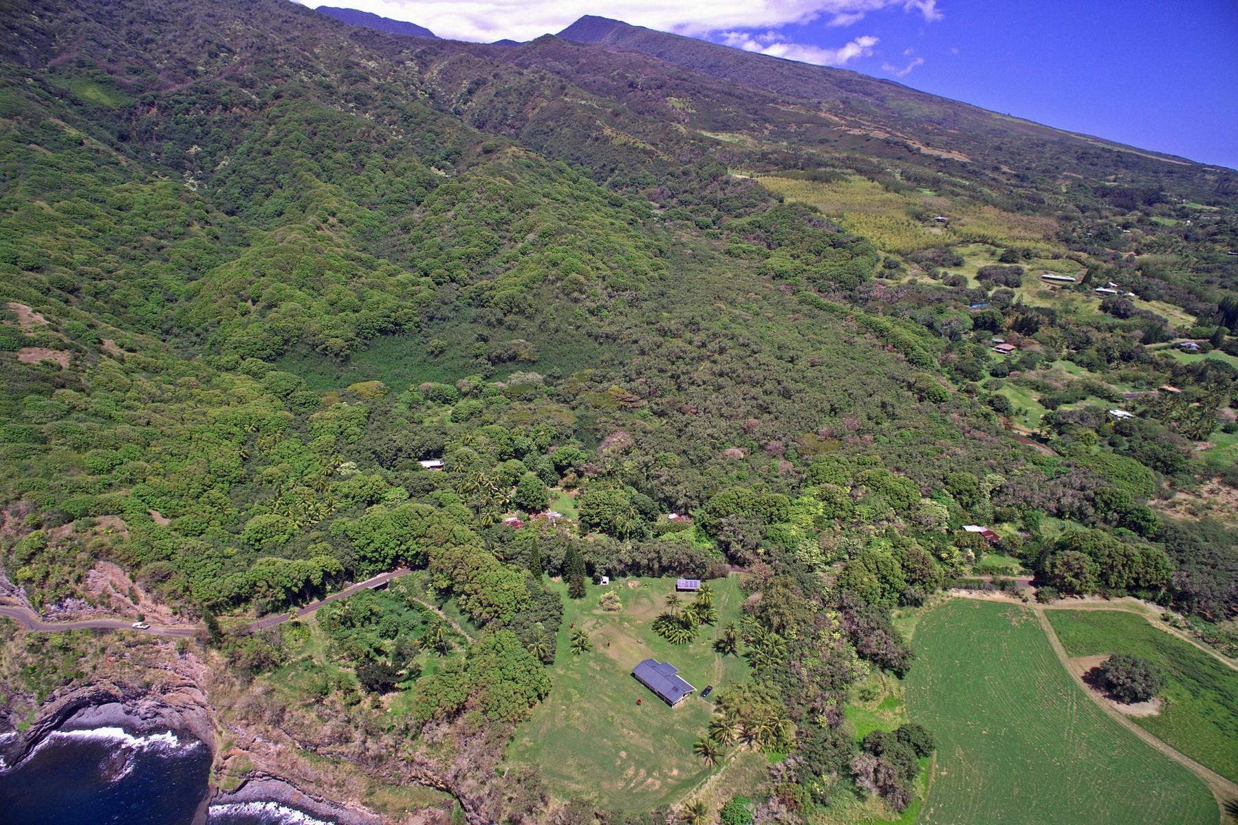 Land for Sale at 14 Acres Kipahulu Rare Find, East Maui Hana Hwy Hana, Hawaii 96713 United States