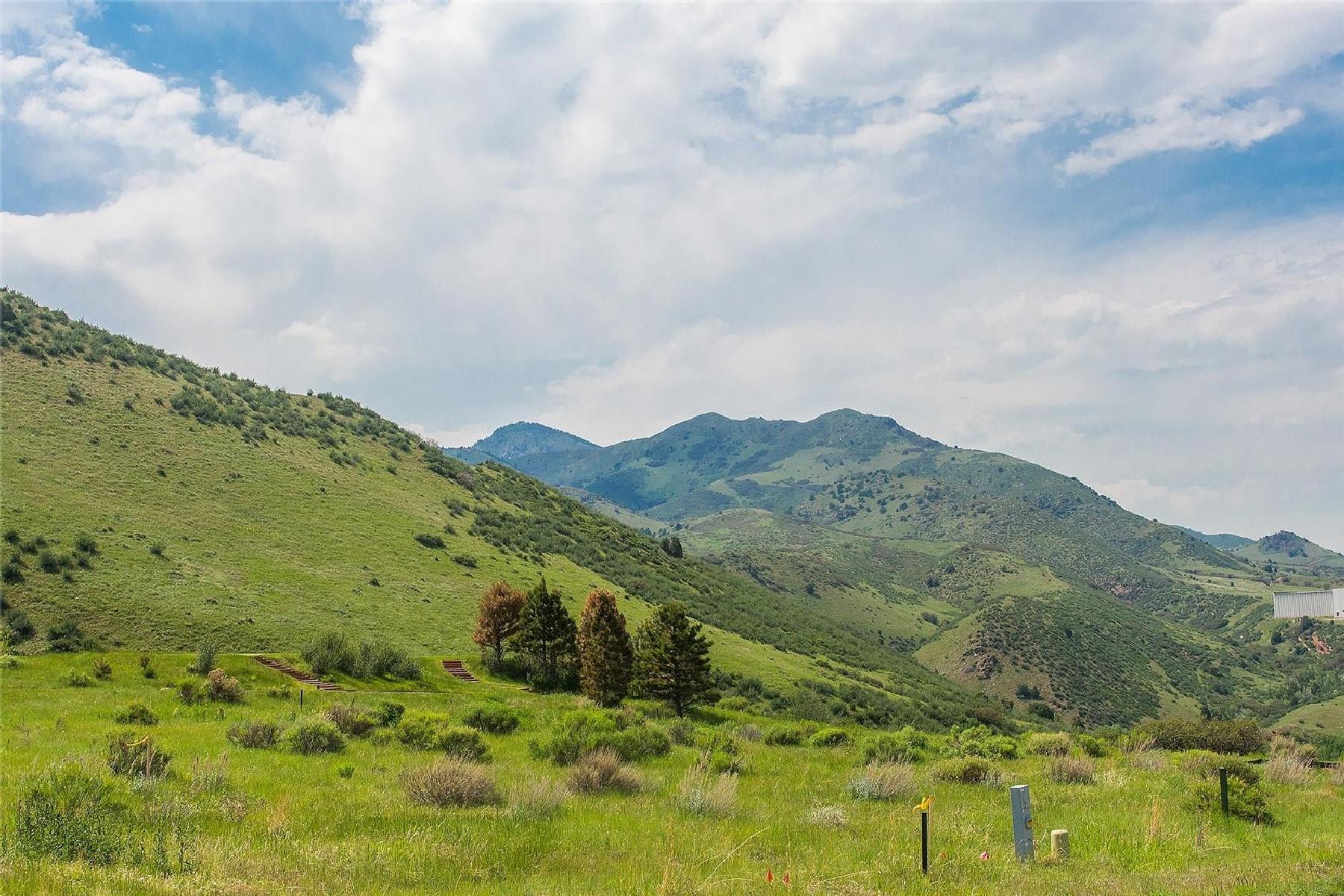 8017 Galileo Way 8017 Galileo Way Littleton, Colorado 80125 Estados Unidos