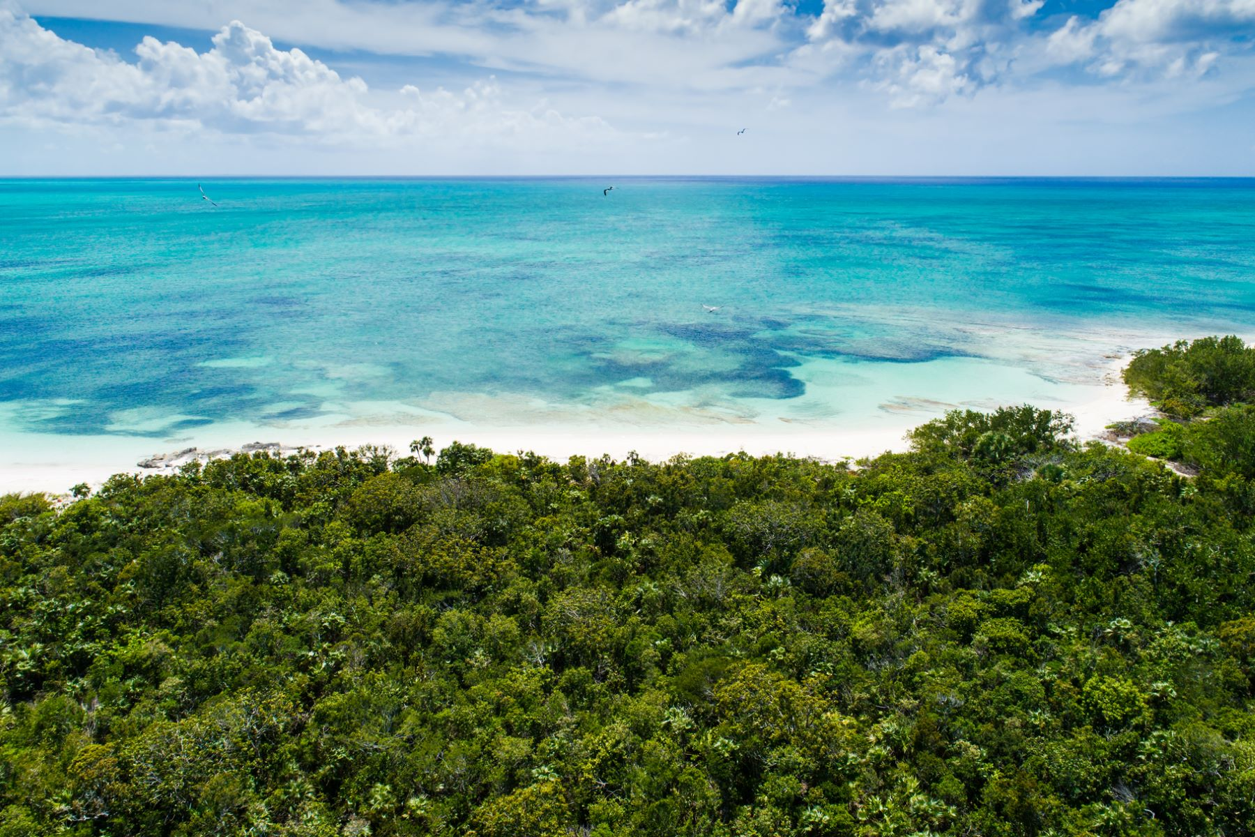 Additional photo for property listing at Parrot Cay Estate Land 3 Parrot Cay, Parrot Cay Îles Turques Et Caïques