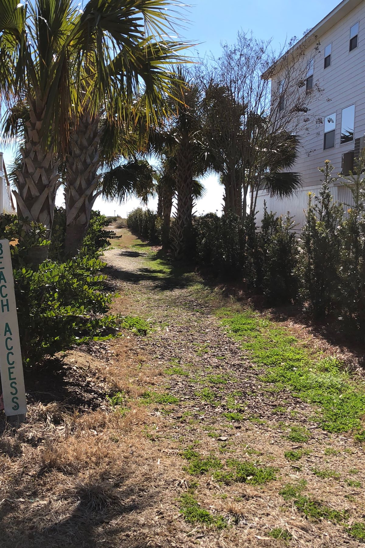Other Residential for Sale at 3 39th Avenue Isle Of Palms, South Carolina, 29451 United States