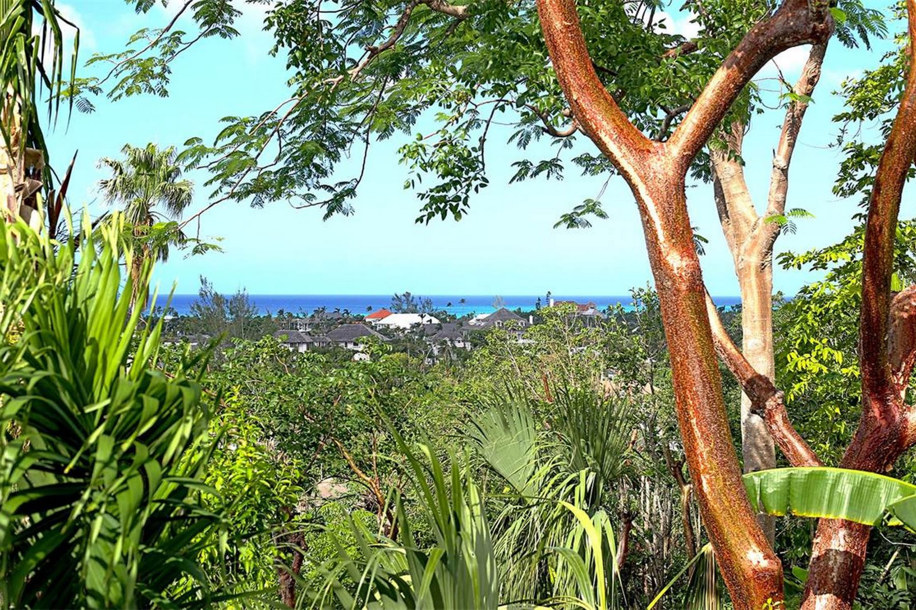 Additional photo for property listing at Tree Tops Lyford Cay, New Providence/Nassau Bahamas