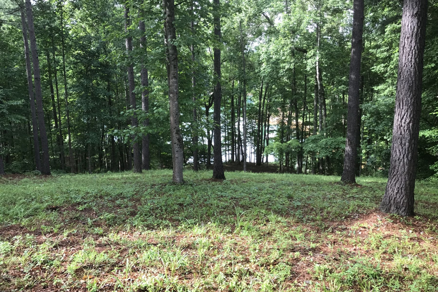Land for Sale at Long Water Views TL62, Salem, South Carolina 29676 United States