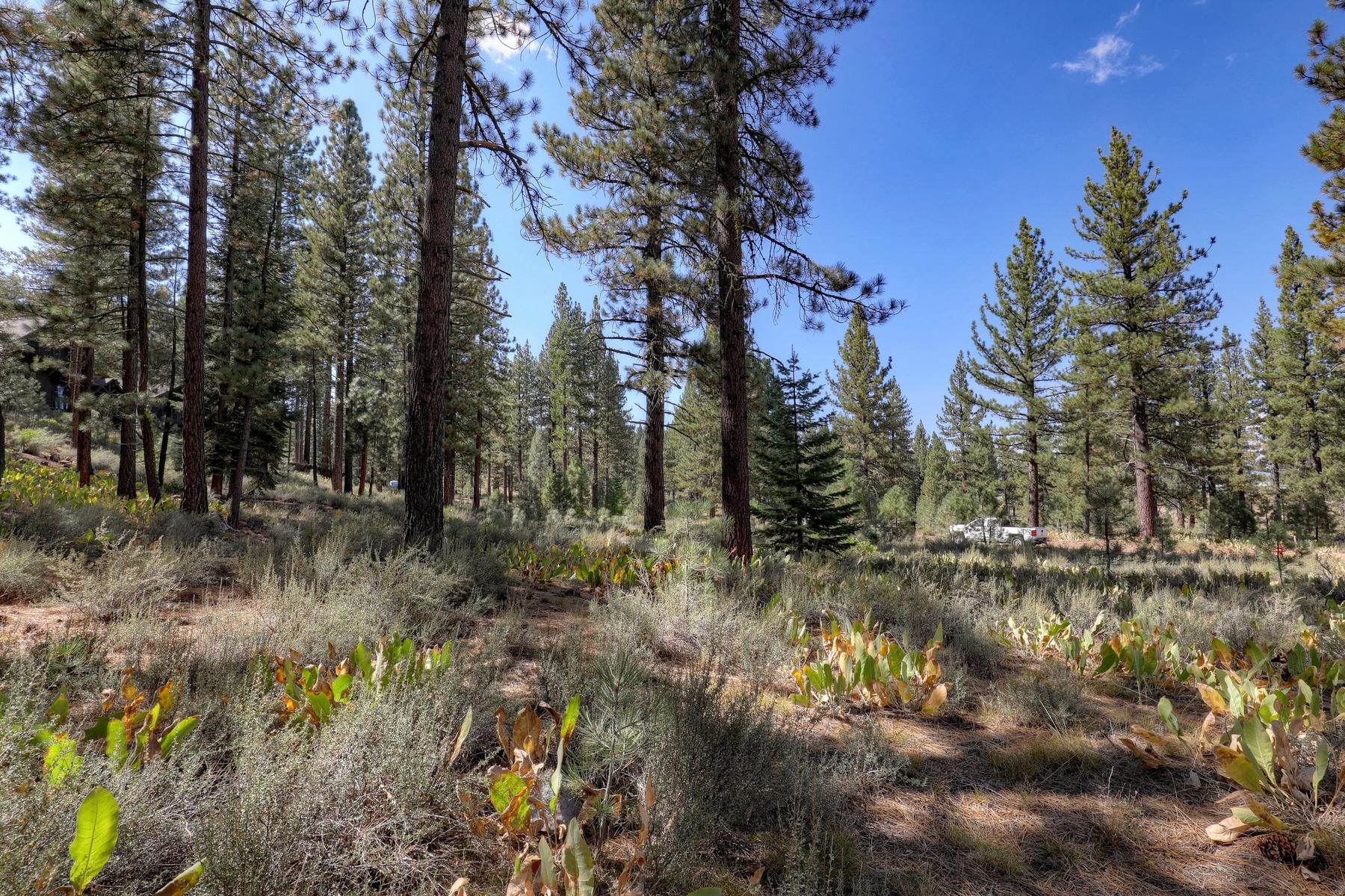 Land for Active at 7520 Lahontan Drive, Truckee, CA 7520 Lahontan Drive Truckee, California 96161 United States