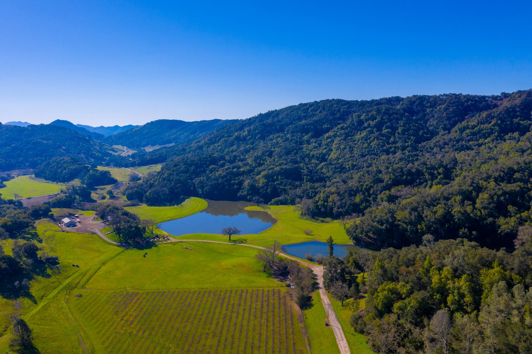 Farm / Ranch / Plantation for Sale at Idyllic 110± Acre Ranch 10101 W Highway 46 Templeton, California 93465 United States