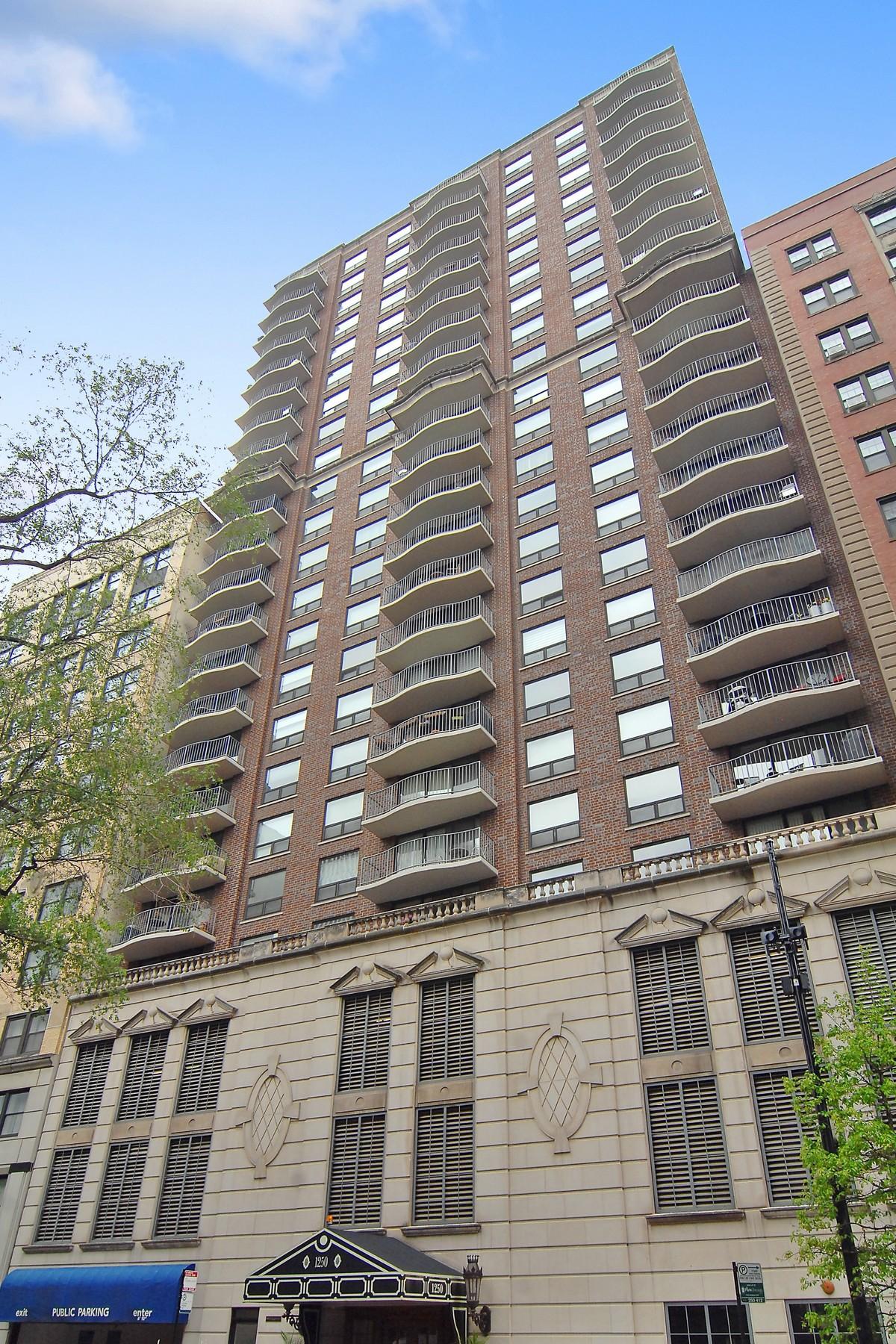 Kat Mülkiyeti için Satış at Immaculate Unit in Fantastic Location 1250 N Dearborn Parkway Unit 5C Near North Side, Chicago, Illinois, 60610 Amerika Birleşik Devletleri