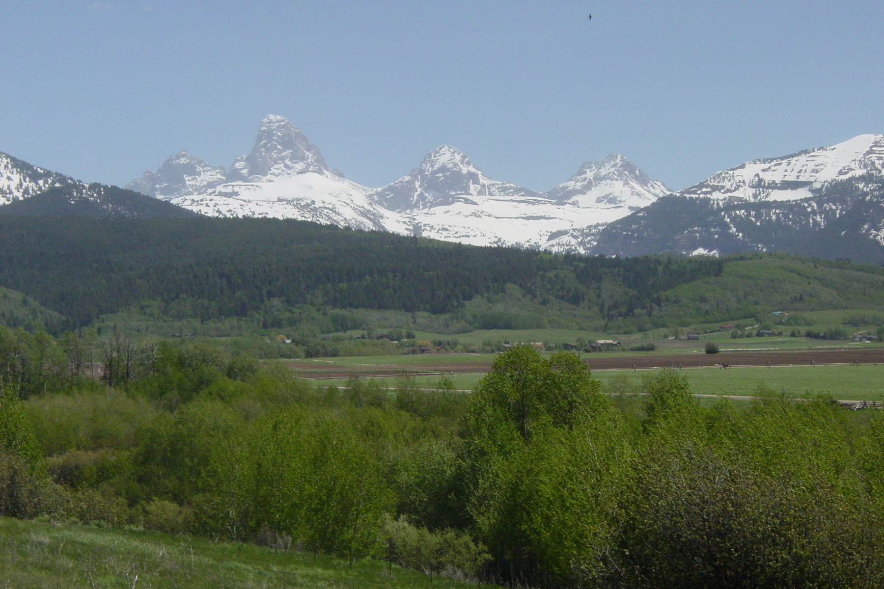 Single Family Homes のために 売買 アット Unsurpassed Teton Views 2210 Snow Crest Ranch Drive, Driggs, アイダホ 83422 アメリカ