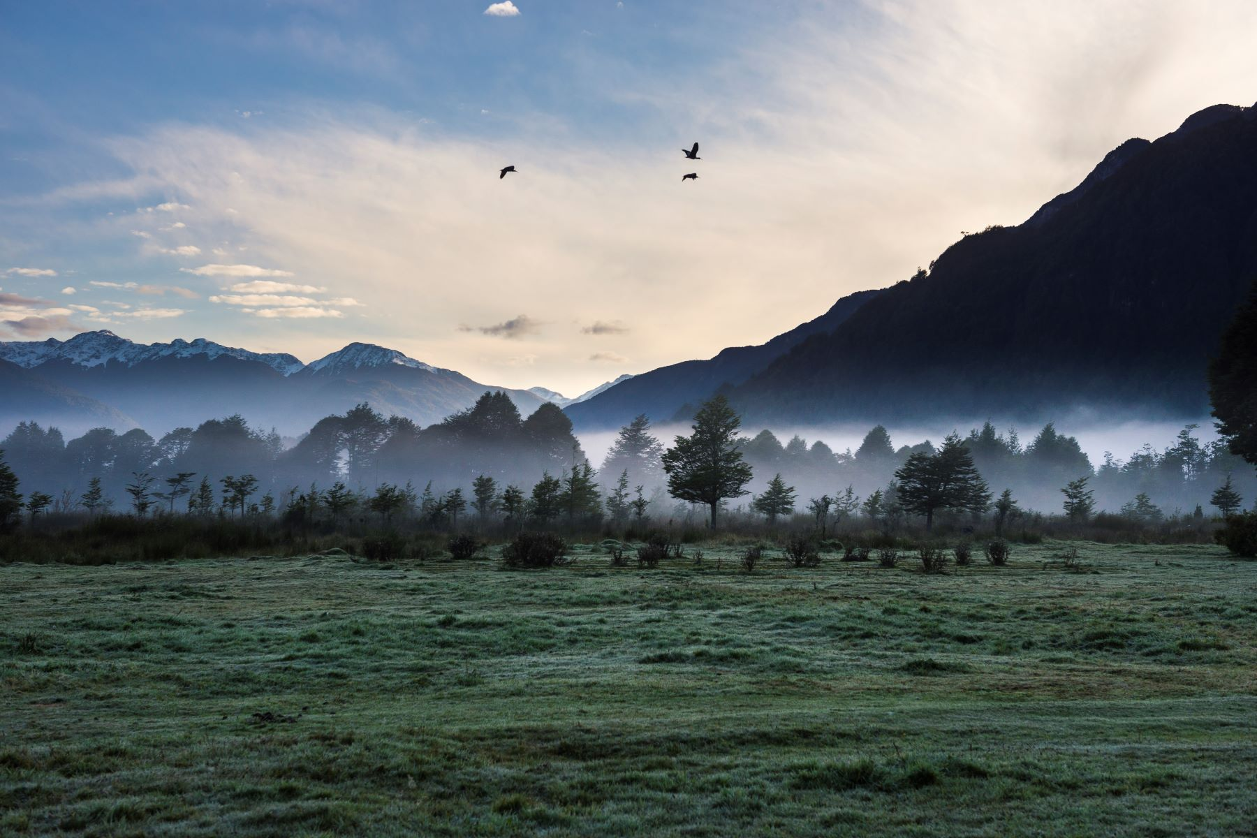 Ferme / Ranch / Plantation pour l Vente à Fundo Cerro de Oro Chilean Patagonia, Chilean Patagonia Sur Portfolio Chili