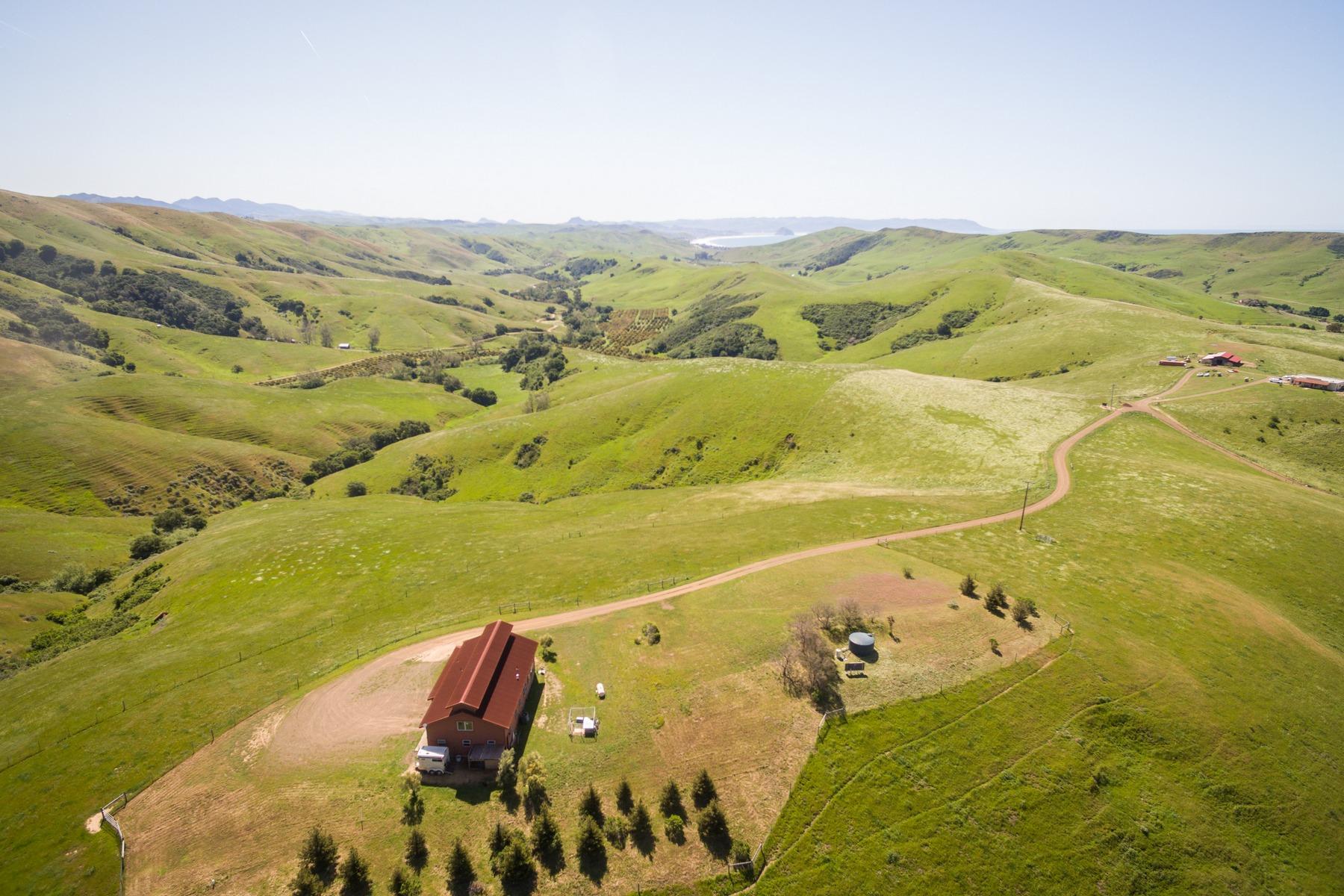 Terrain pour l Vente à 62± Acre Coastal Land 2720 Picachio Rd Cayucos, Californie 93430 États-Unis