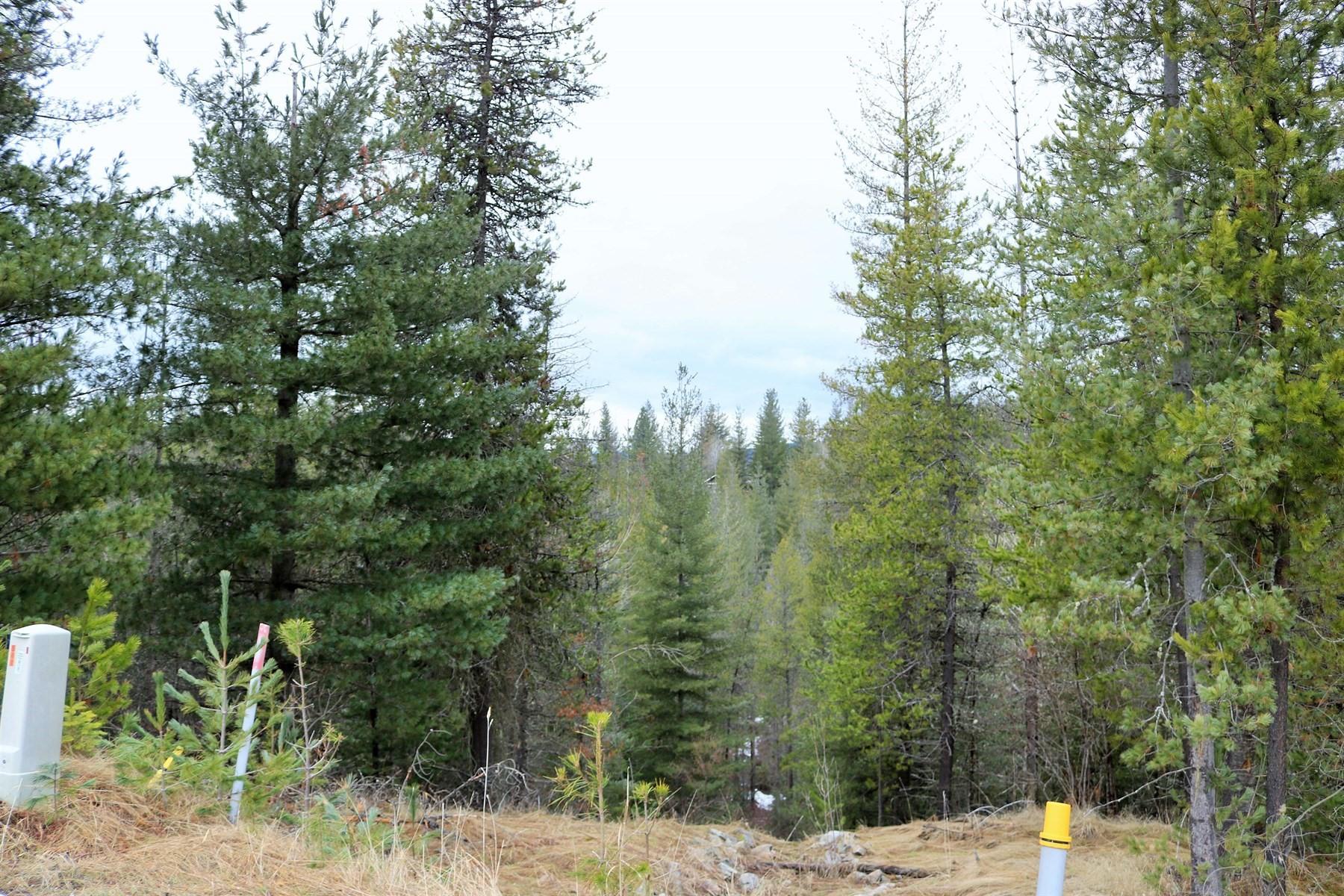 Terrain pour l Vente à 116 Blazing Saddle Pinehurst, Idaho, 83850 États-Unis