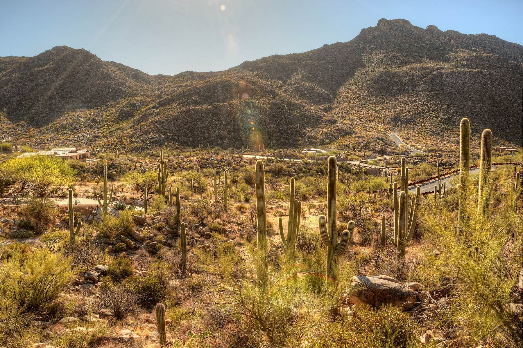 أراضي للـ Sale في Gorgeous 2.25 Acre Lot in Prestigious Canyon Pass at Dove Mountain 4148 W Cayton Mountain Drive, Marana, Arizona, 85658 United States
