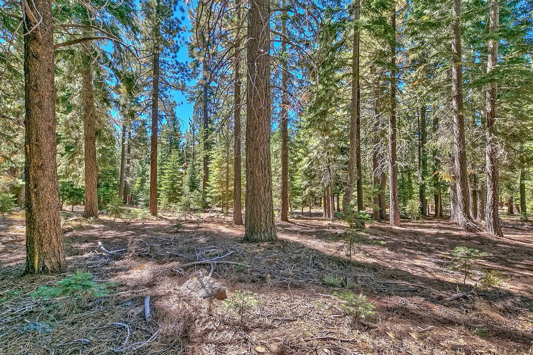 Land for Active at 11901 Sitzmark Way 11901 Sitzmark Way Truckee, California 96161 United States