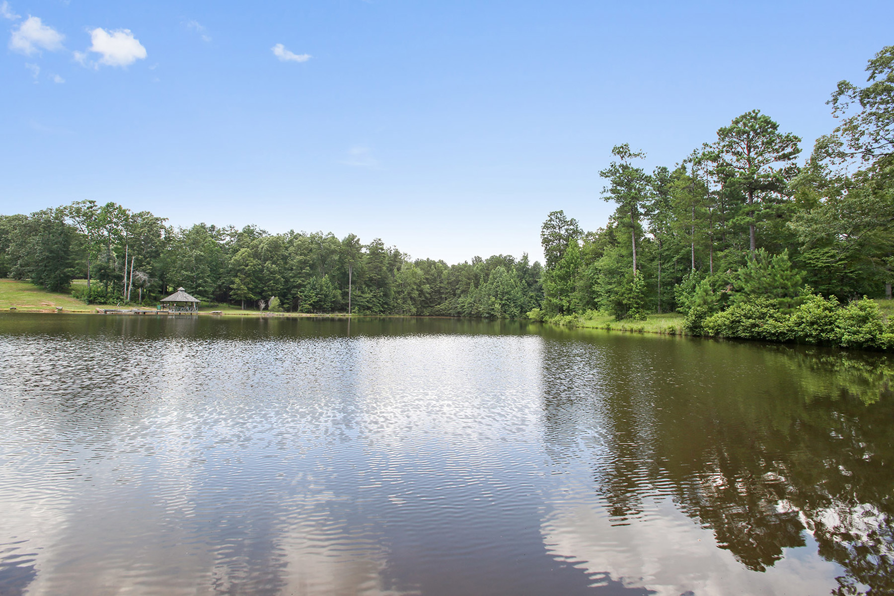 Additional photo for property listing at Magnificent Equestrian and Recreational Estate 480 JD Walton Road Newnan, Georgien 30263 Usa