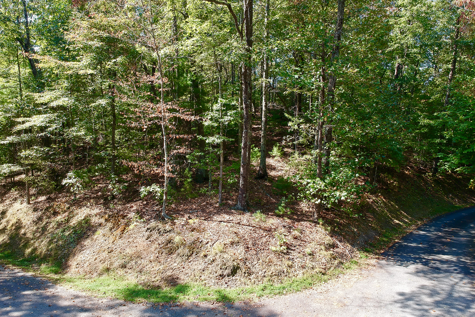 Land for Sale at FRENCH BROAD CROSSING 75 Longview Ct , 4 Marshall, North Carolina 28753 United States