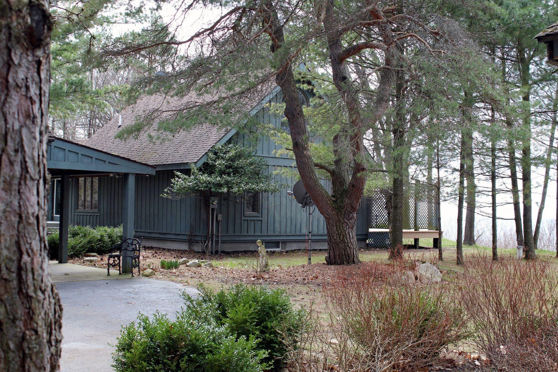 Maison unifamiliale pour l Vente à Blue Duck 3699 North Lake Shore Drive Harbor Springs, Michigan, 49740 États-Unis