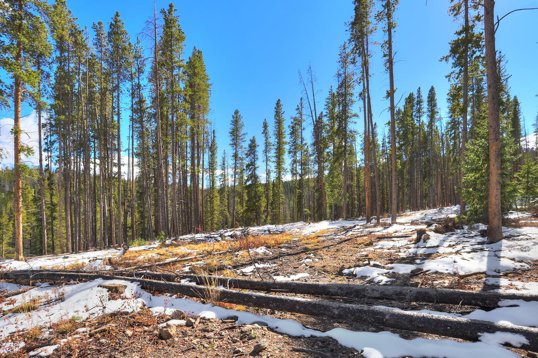 Land for Active at Barton Ridge Lot #10 0207 Barton Ridge Drive Breckenridge, Colorado 80424 United States
